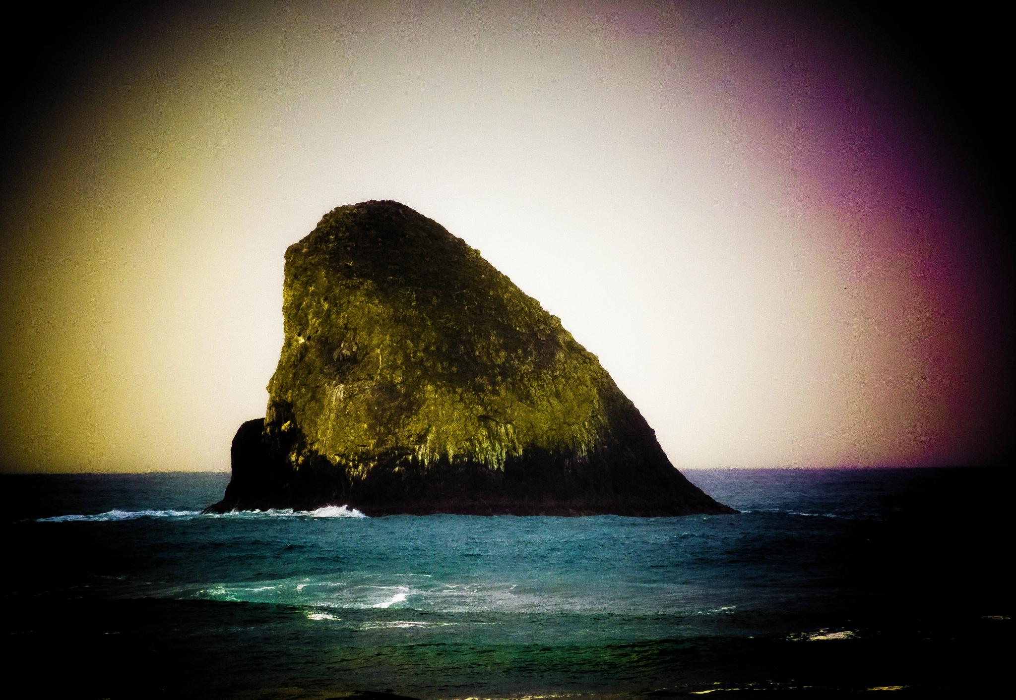 Ocean Rock by Gillianne Fields