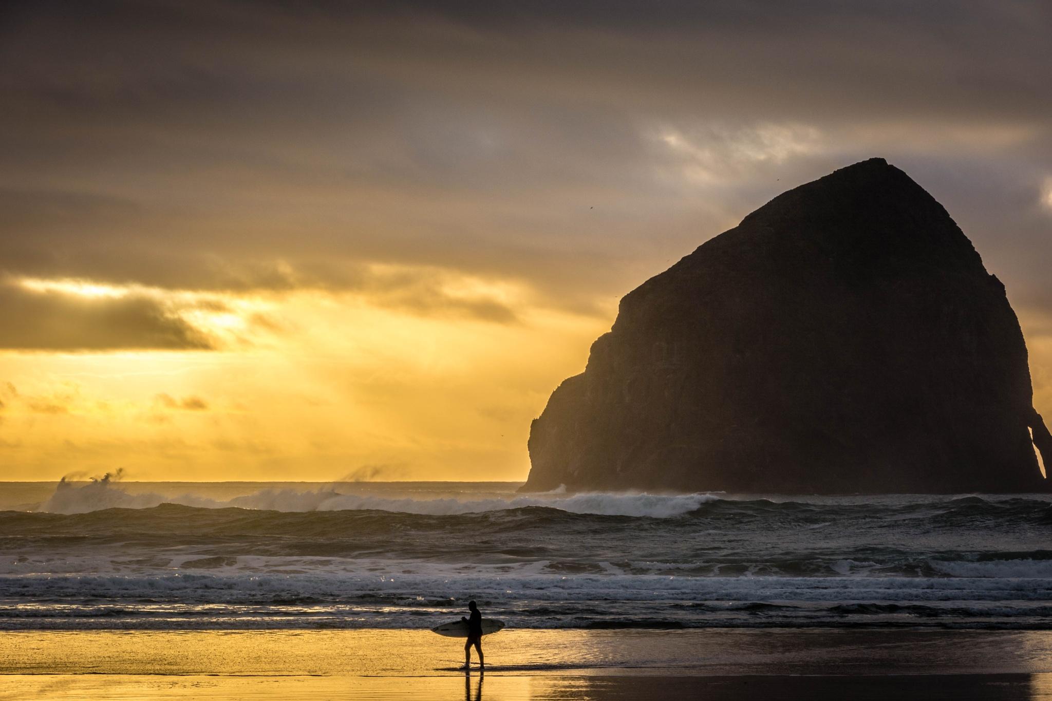 Pacific Surfer by Gillianne Fields