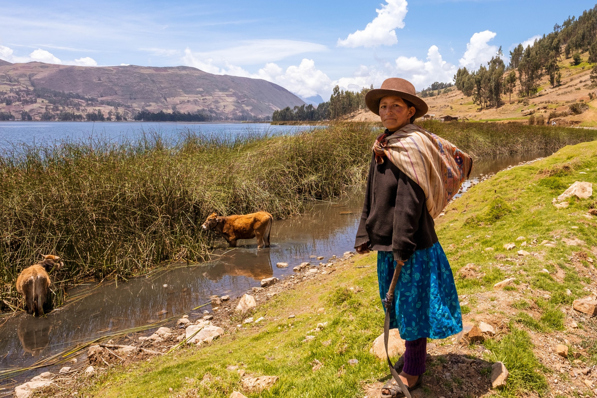 Andes Young Woman  by Jose M