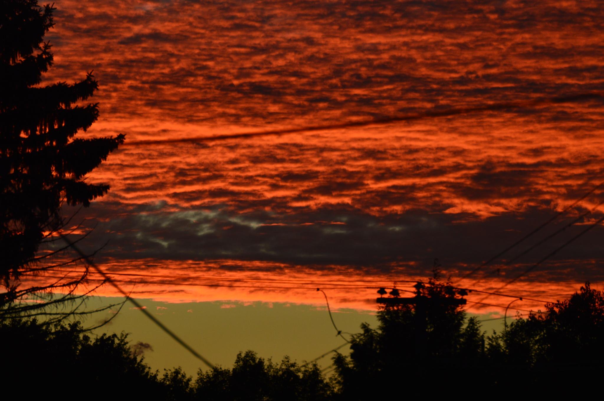 Sunset by Jb4221