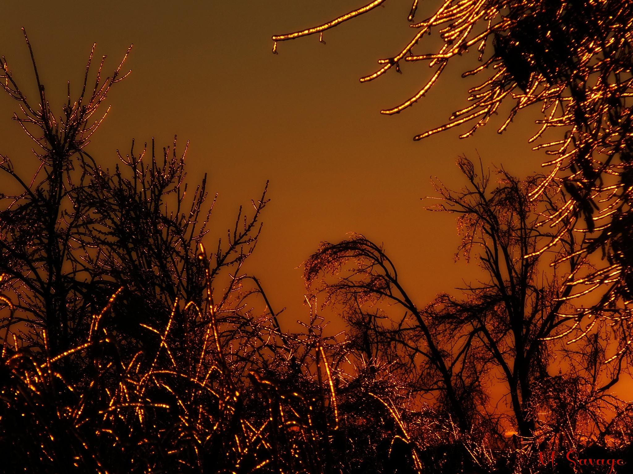 Frozen Sunset by Michelle Christensen-Savage