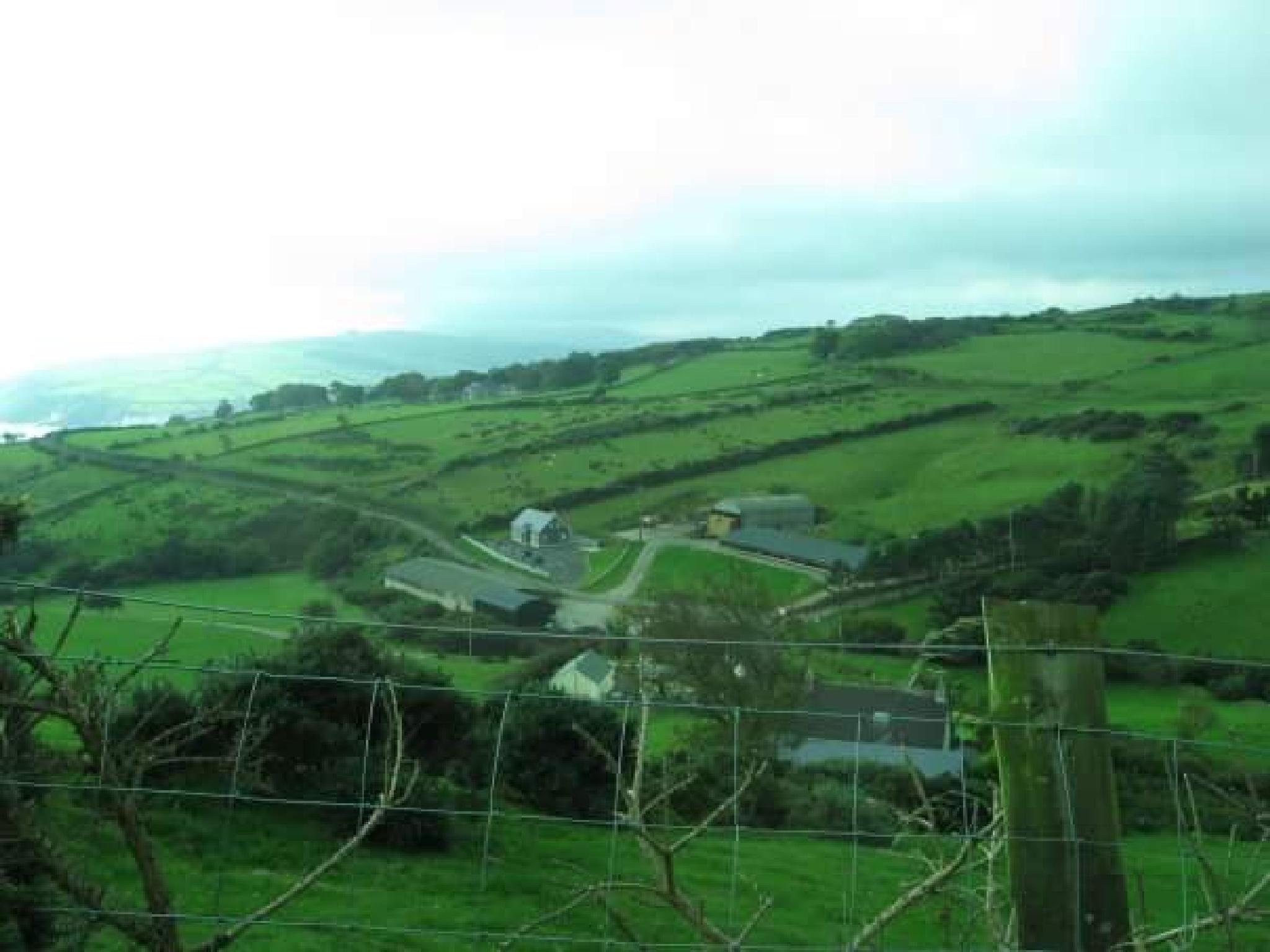 Ireland by Jessica Lynn Winger