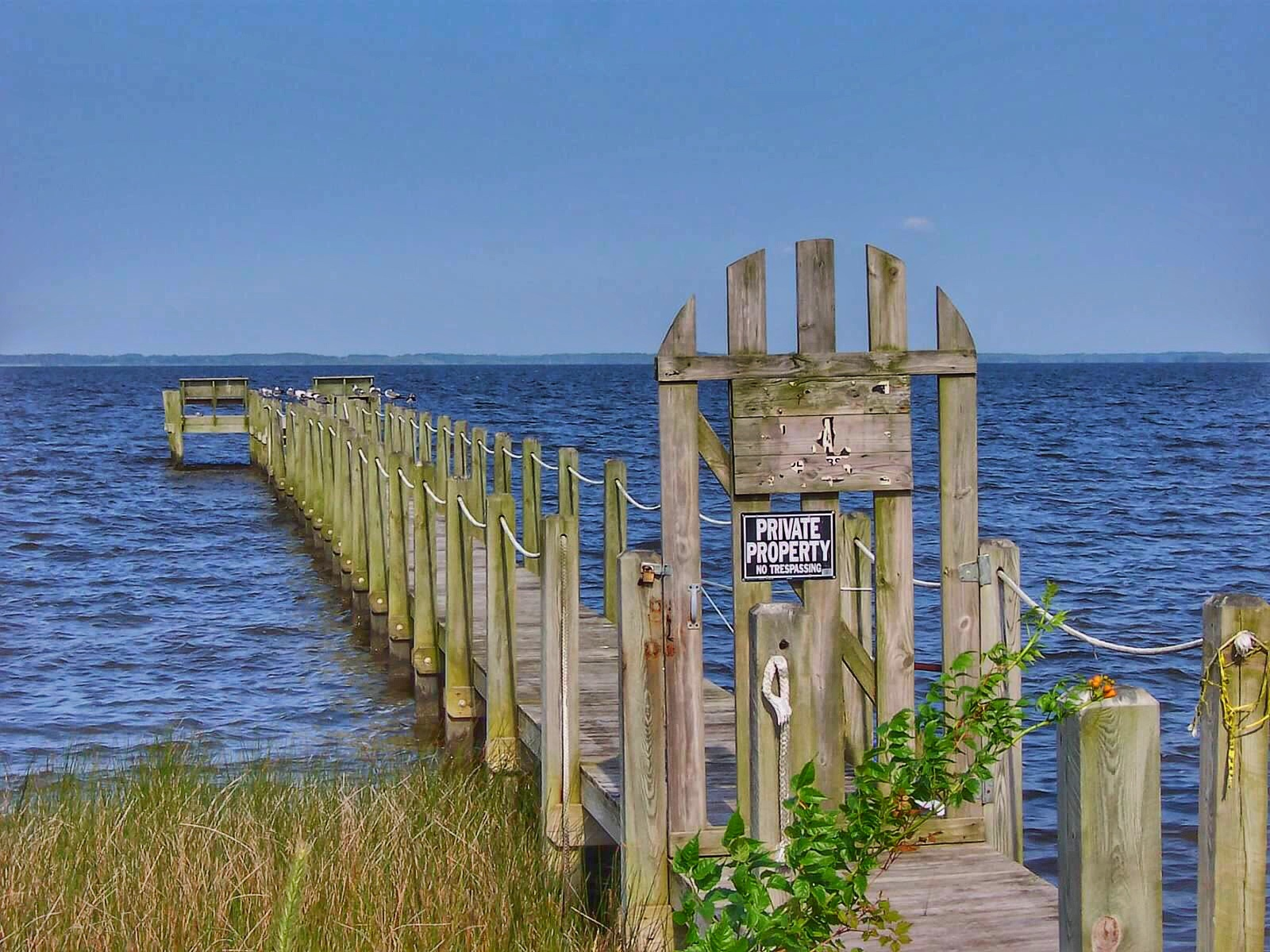 Dock on the Bay by Frank Morris