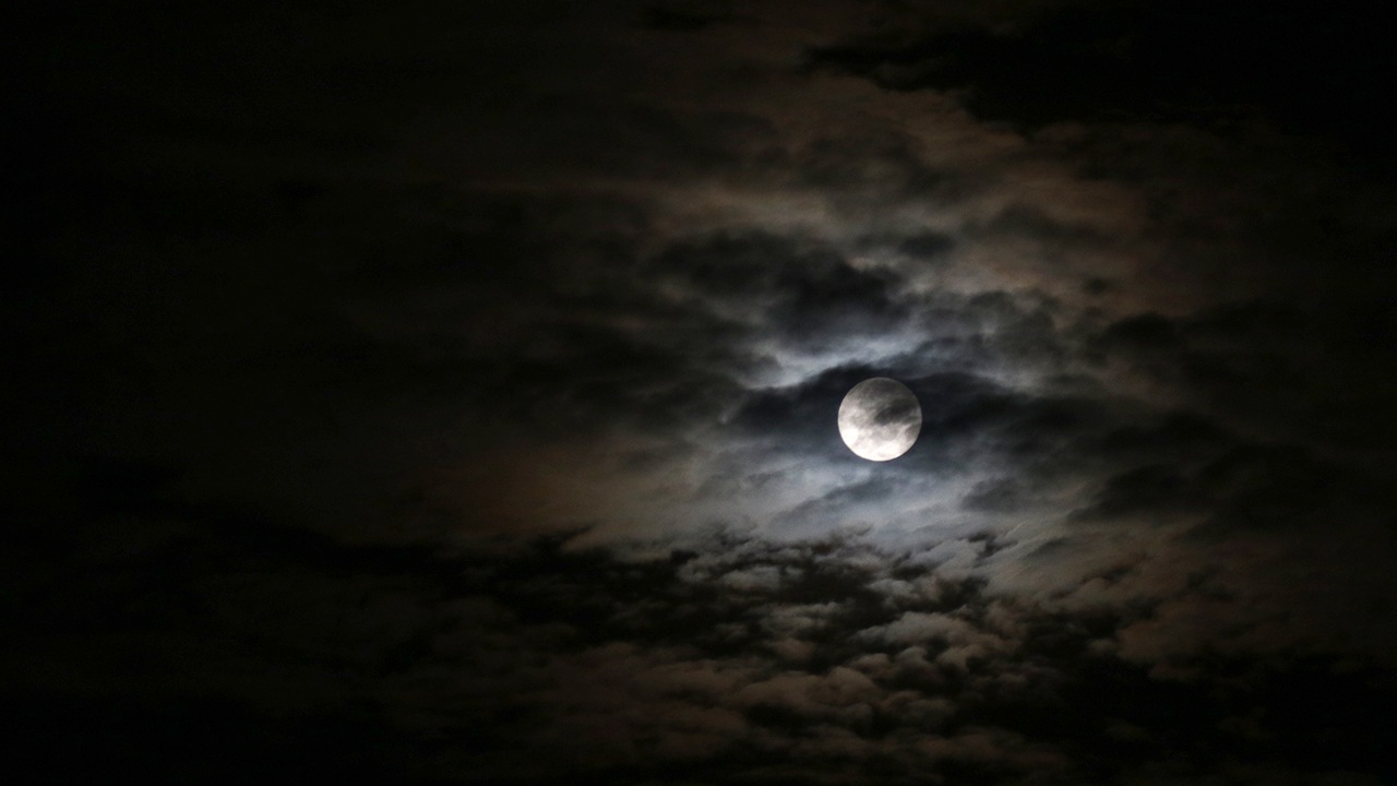 Moonlight by linh