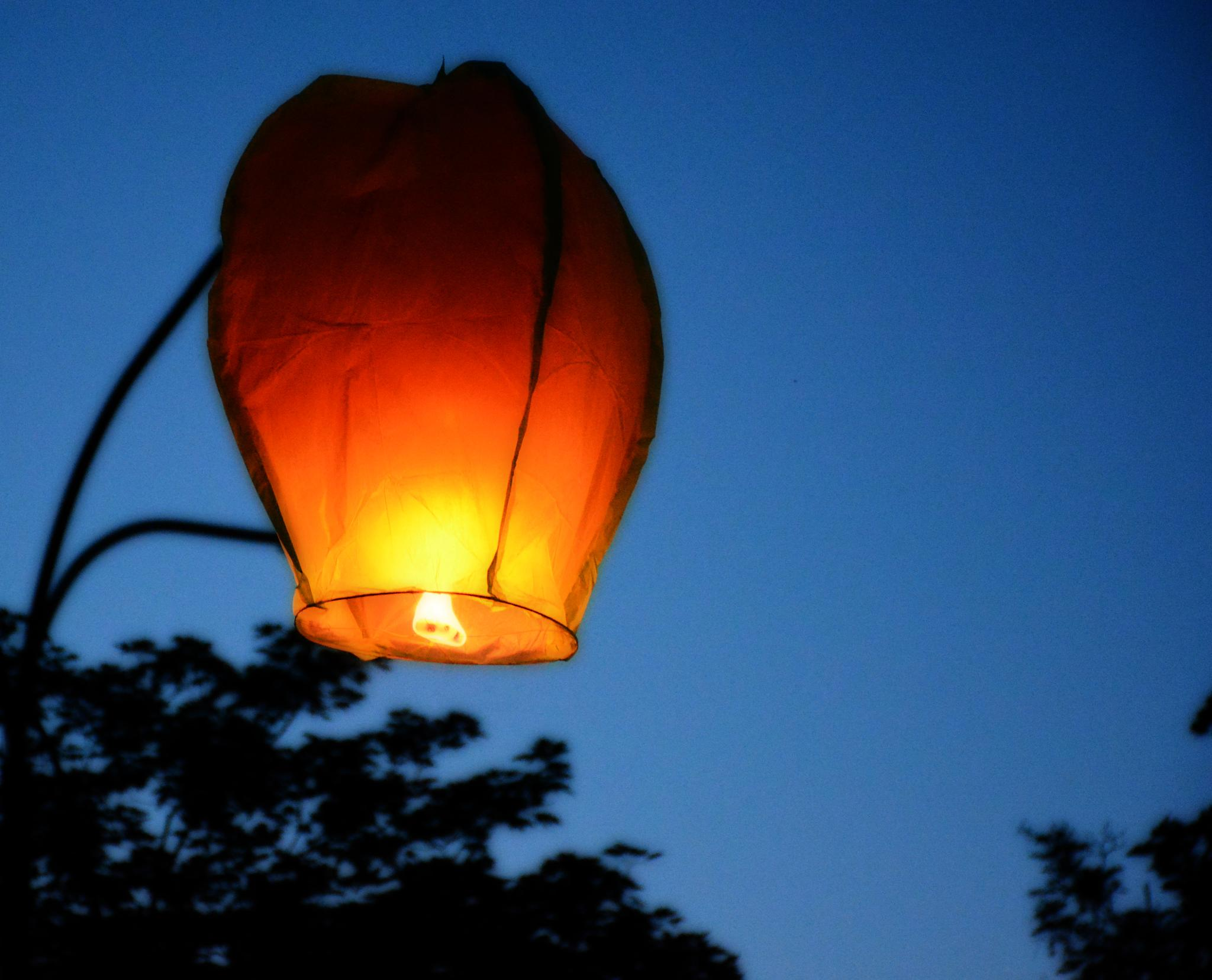 Lampion on the pole by adi_fire