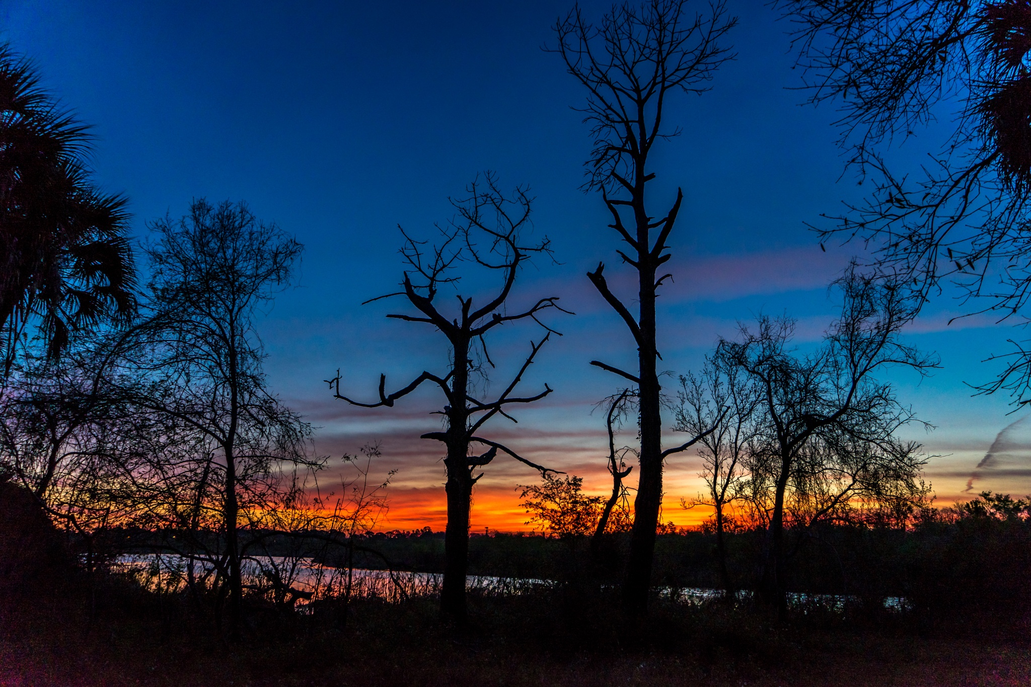 Sunrise Colors  by Gary Posner