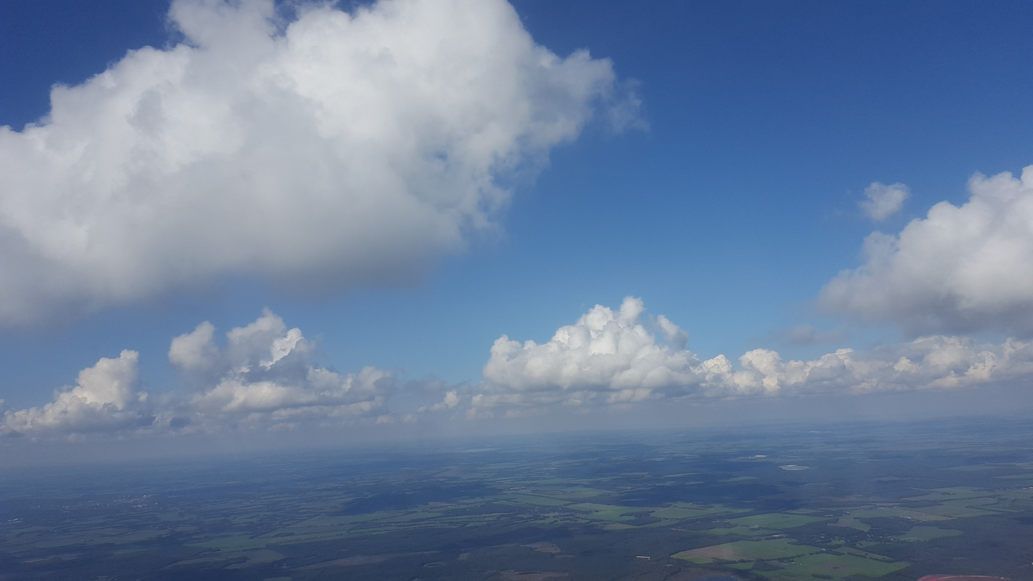flying high  by Yvonne Streefkerk