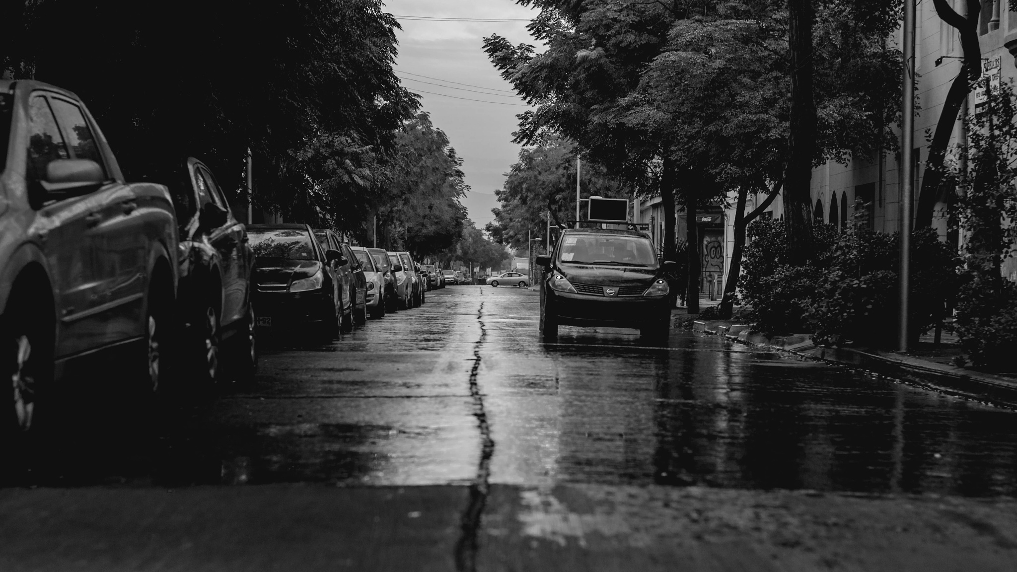 car 240616 by Eduardo Gomez