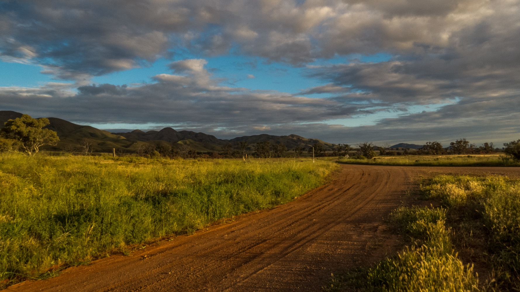 Red Earth Australian Country Road  by Jan Taylor