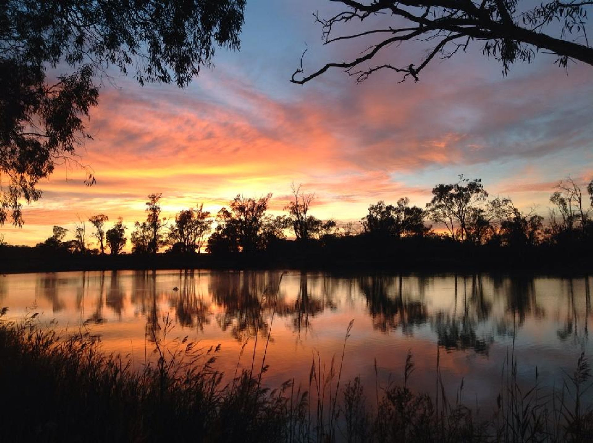 Sunset on the River Murray by Jan Taylor