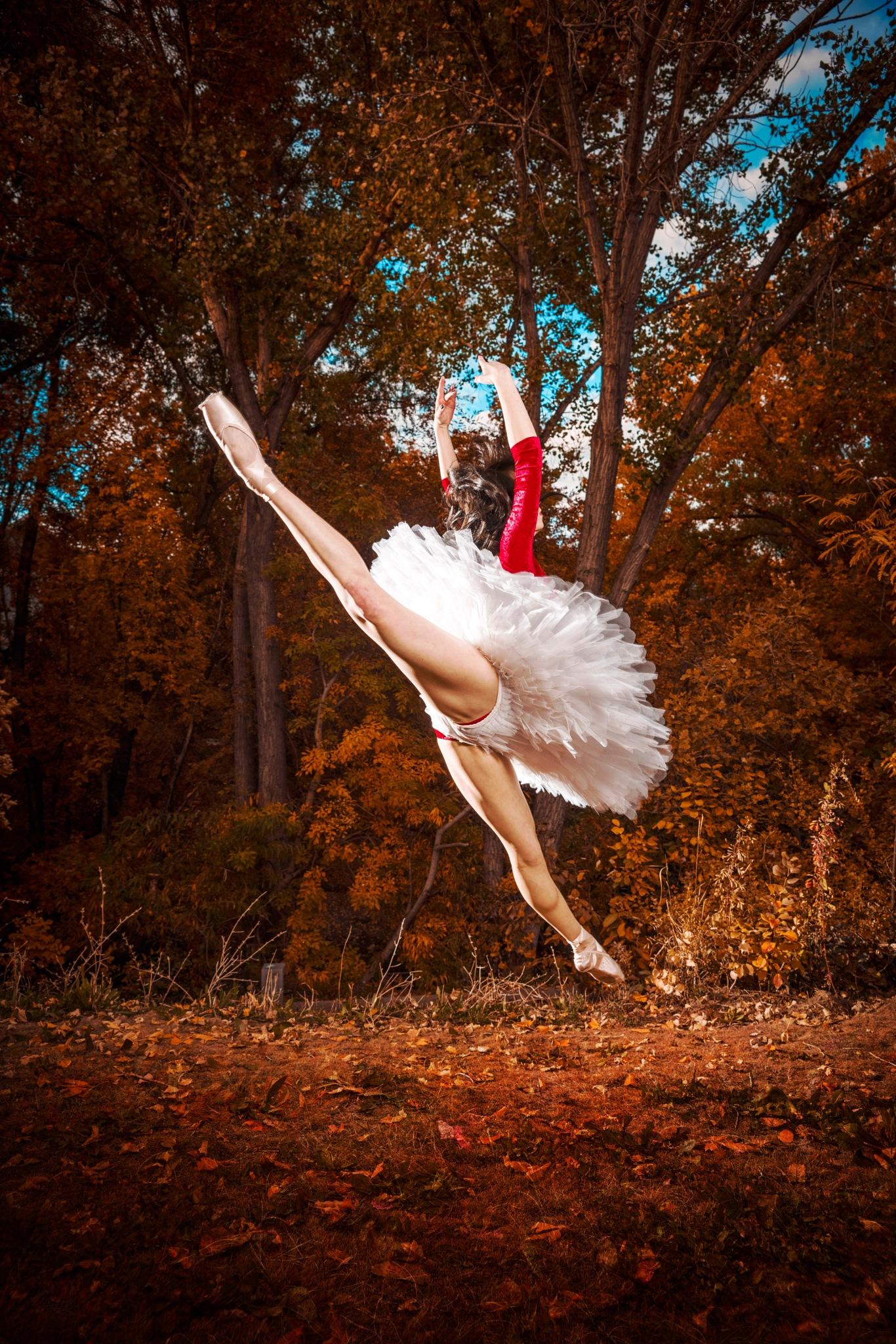 Flying Ballet Dancer in the Forrest by Adam Evans