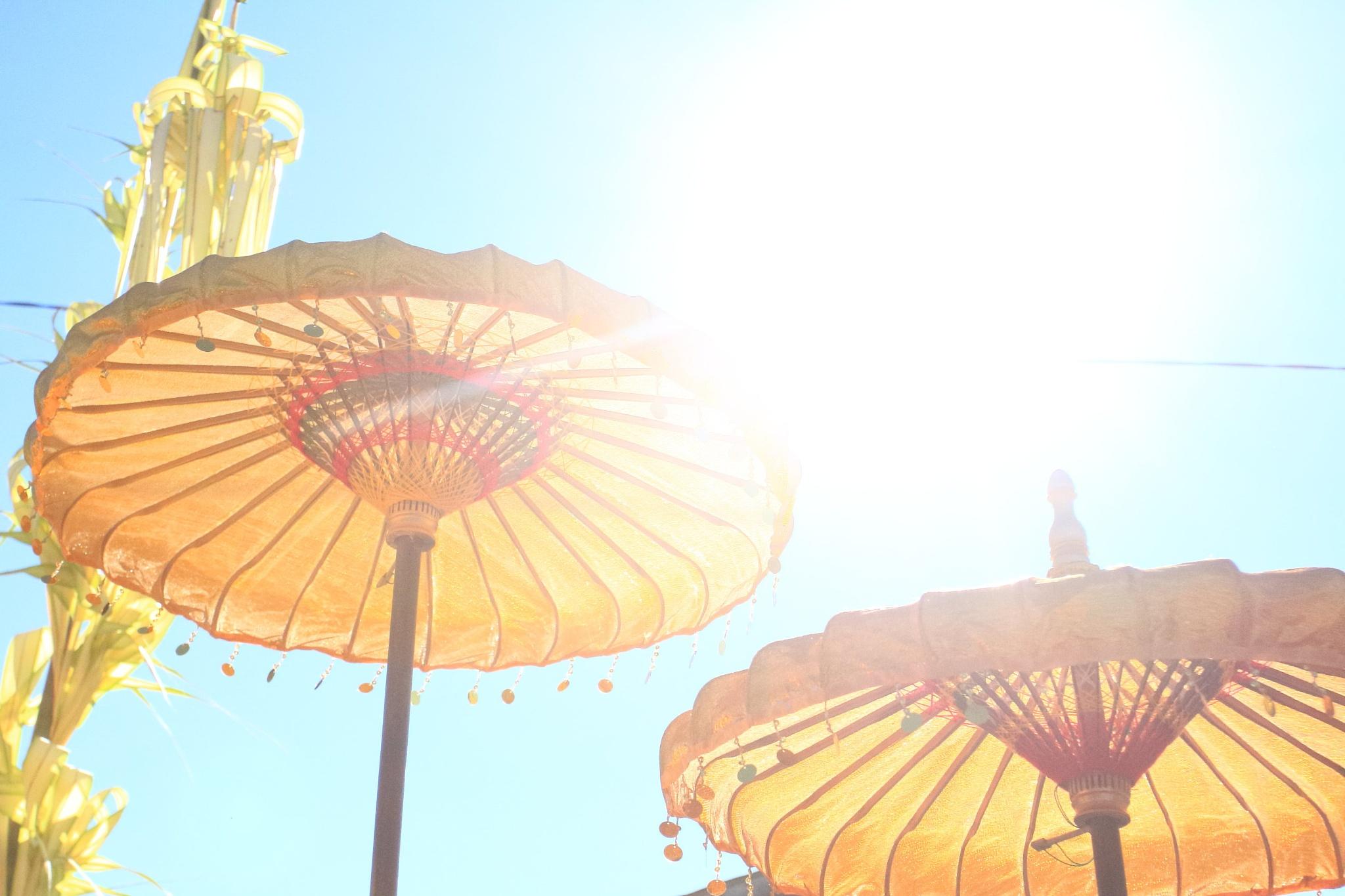the umbrella by Garuda Dewa Ardra
