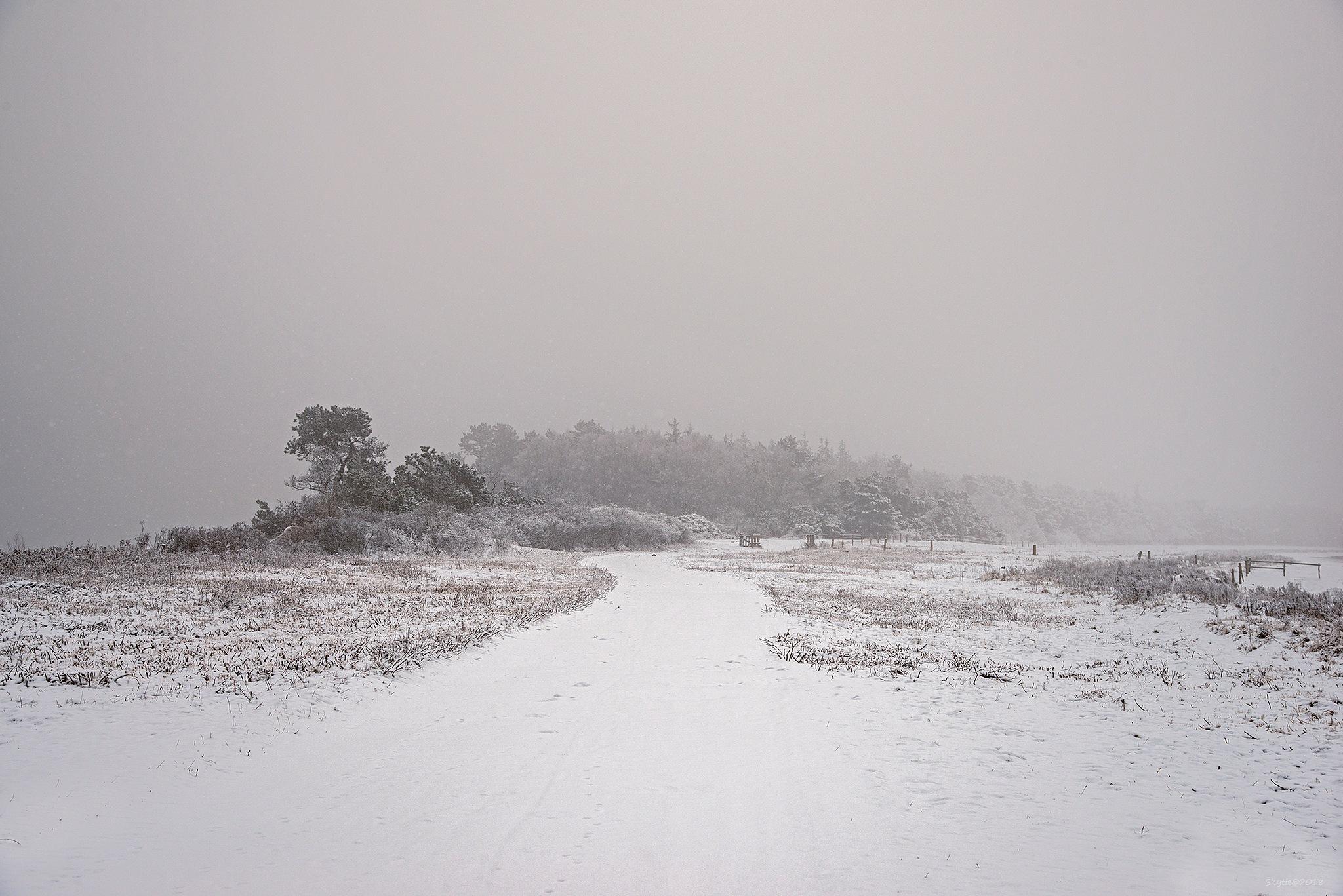 Winter. by Keld Skytte Petersen