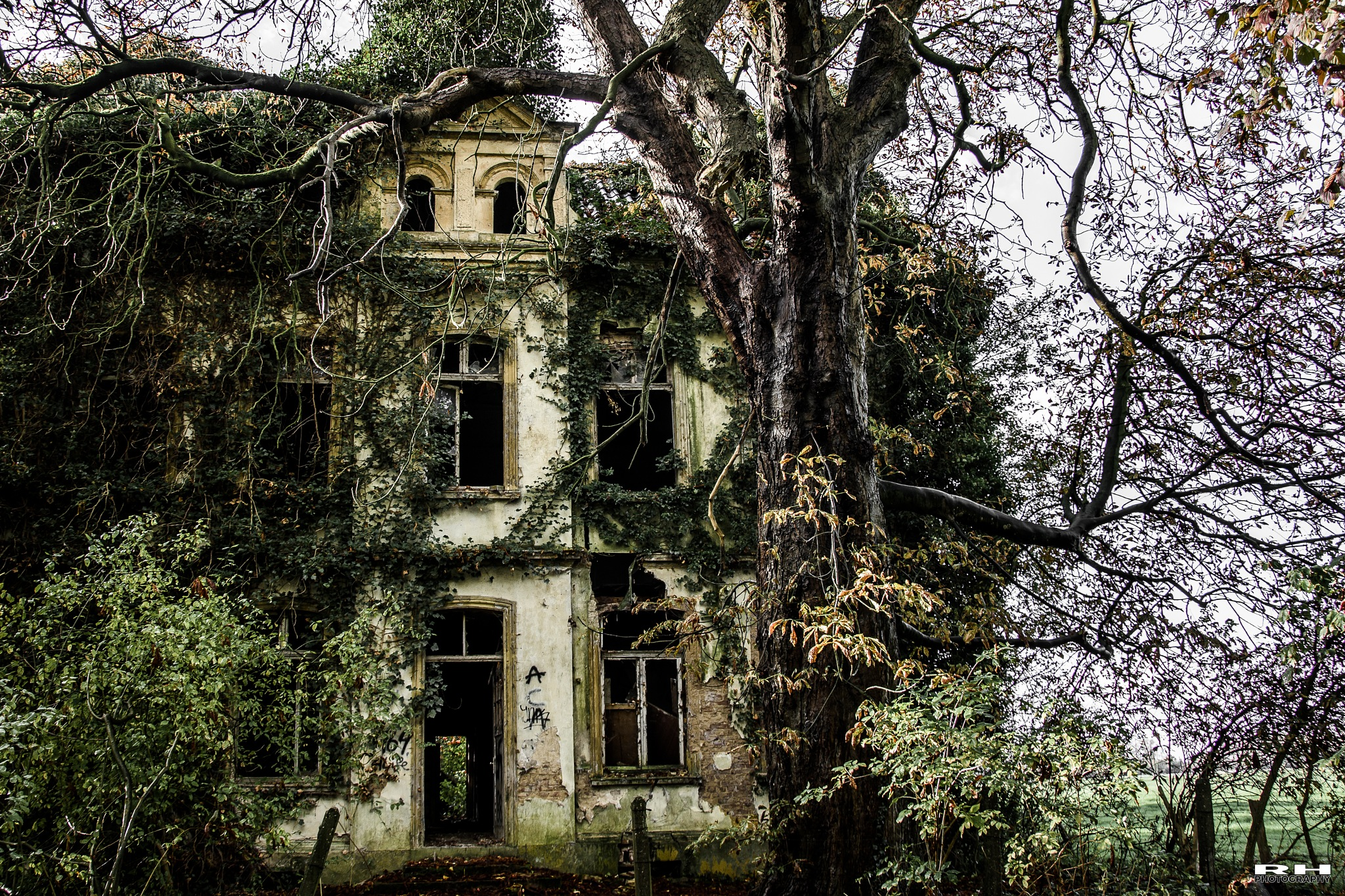 Halloween house!  by rhphotography