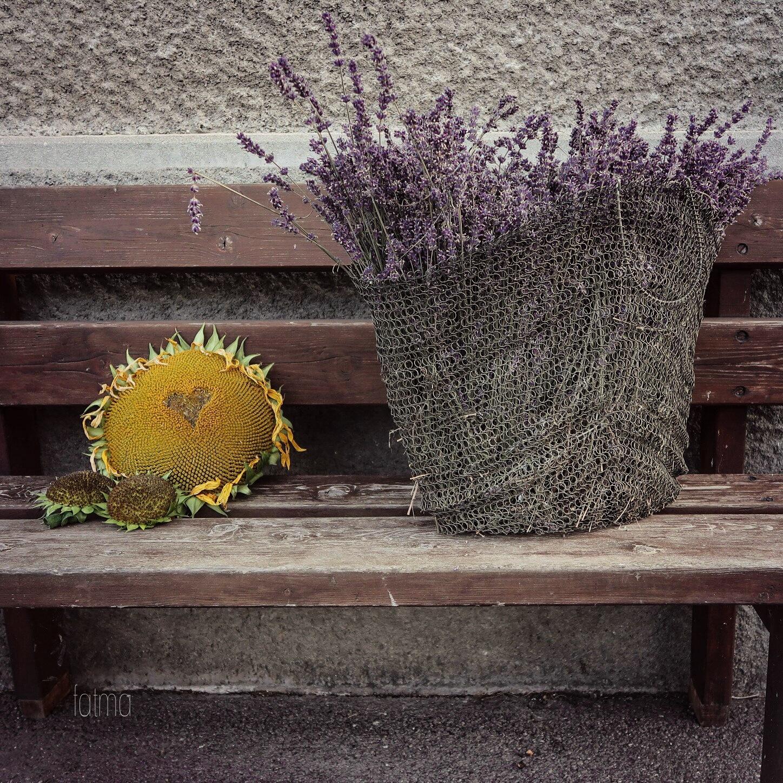 Untitled by Fatma ELgargani