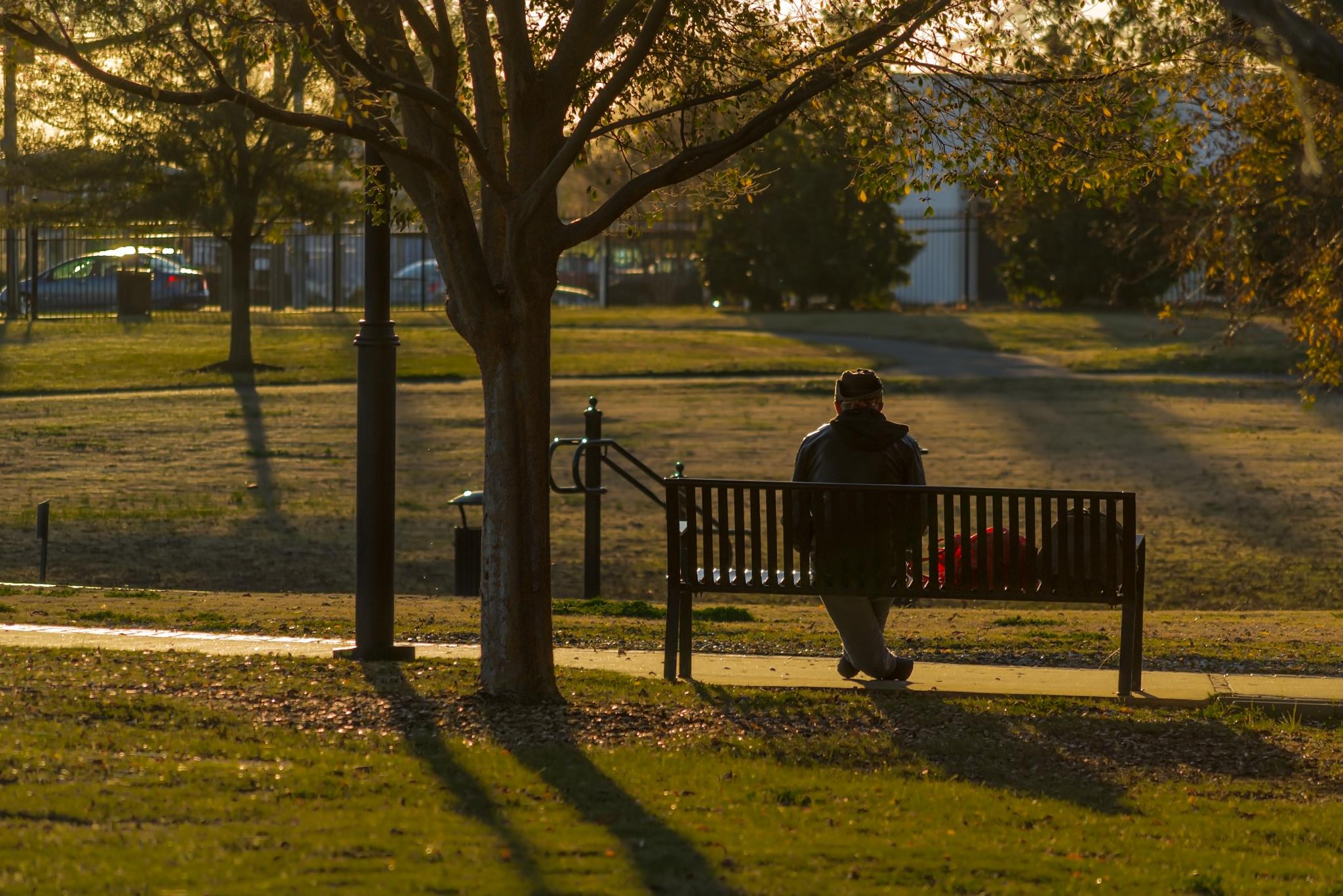At the Park by dennisJ
