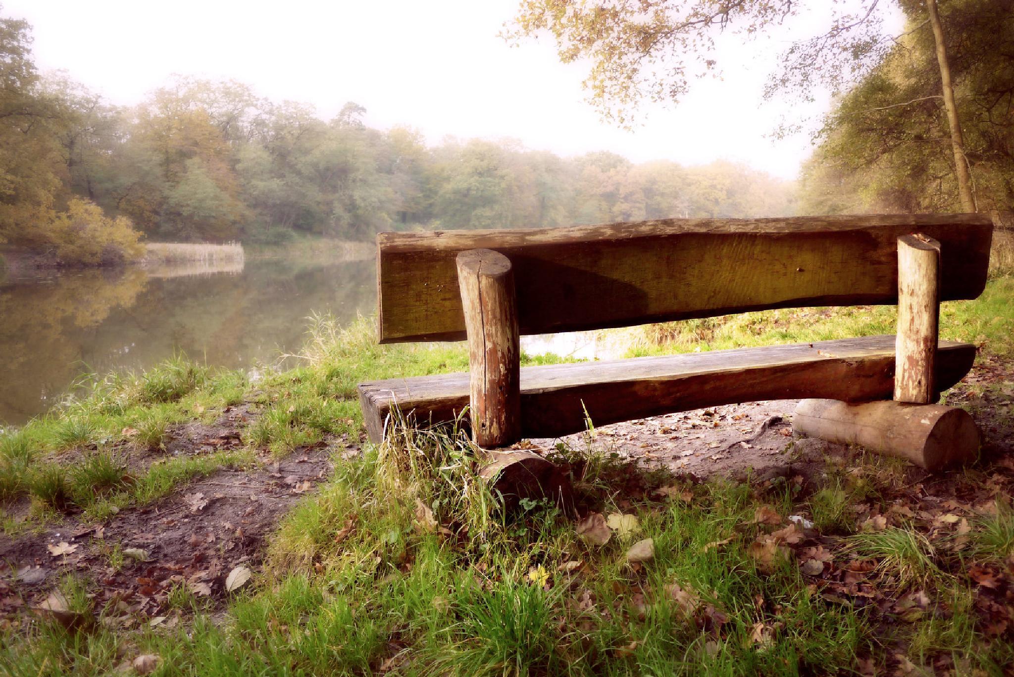 Photo in Nature #elbe