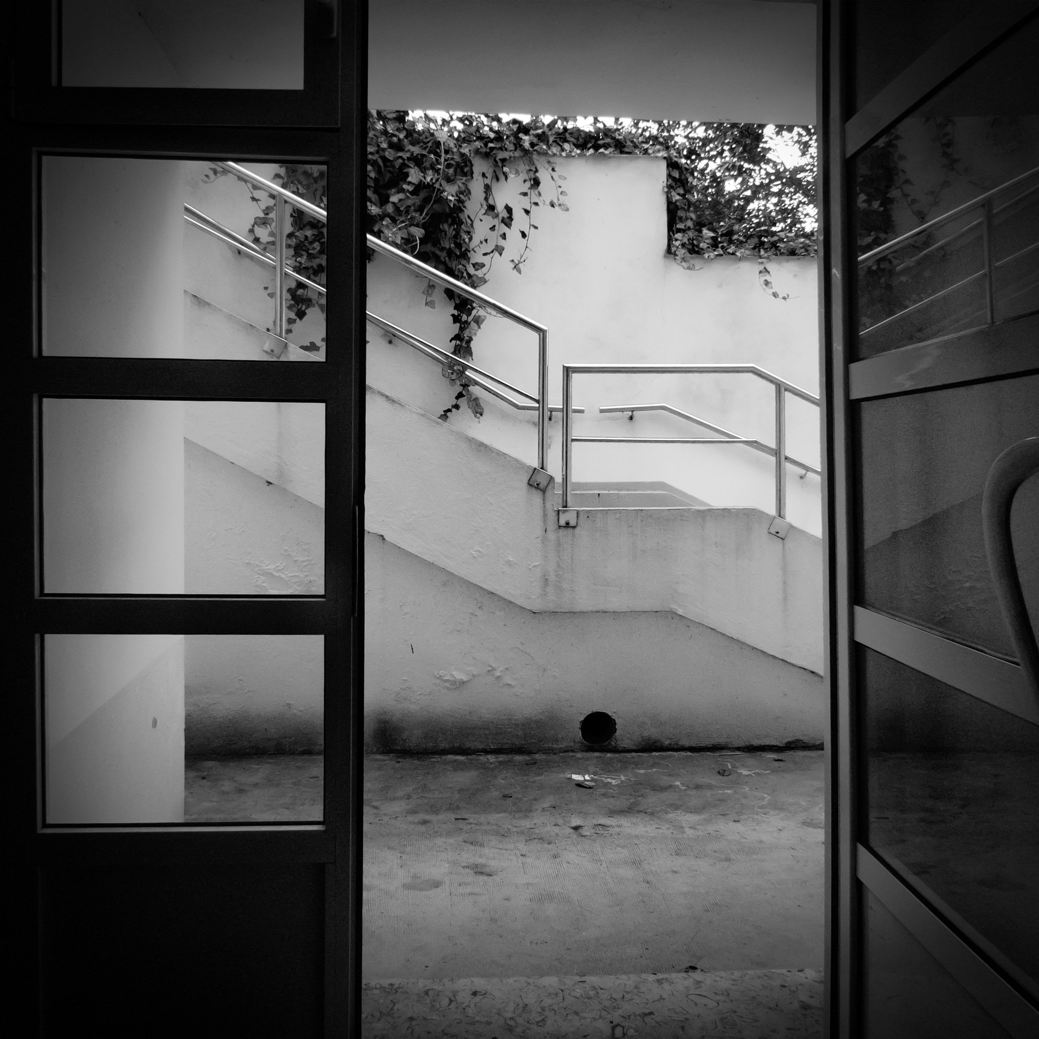 Untitled by rodriguezchaparro
