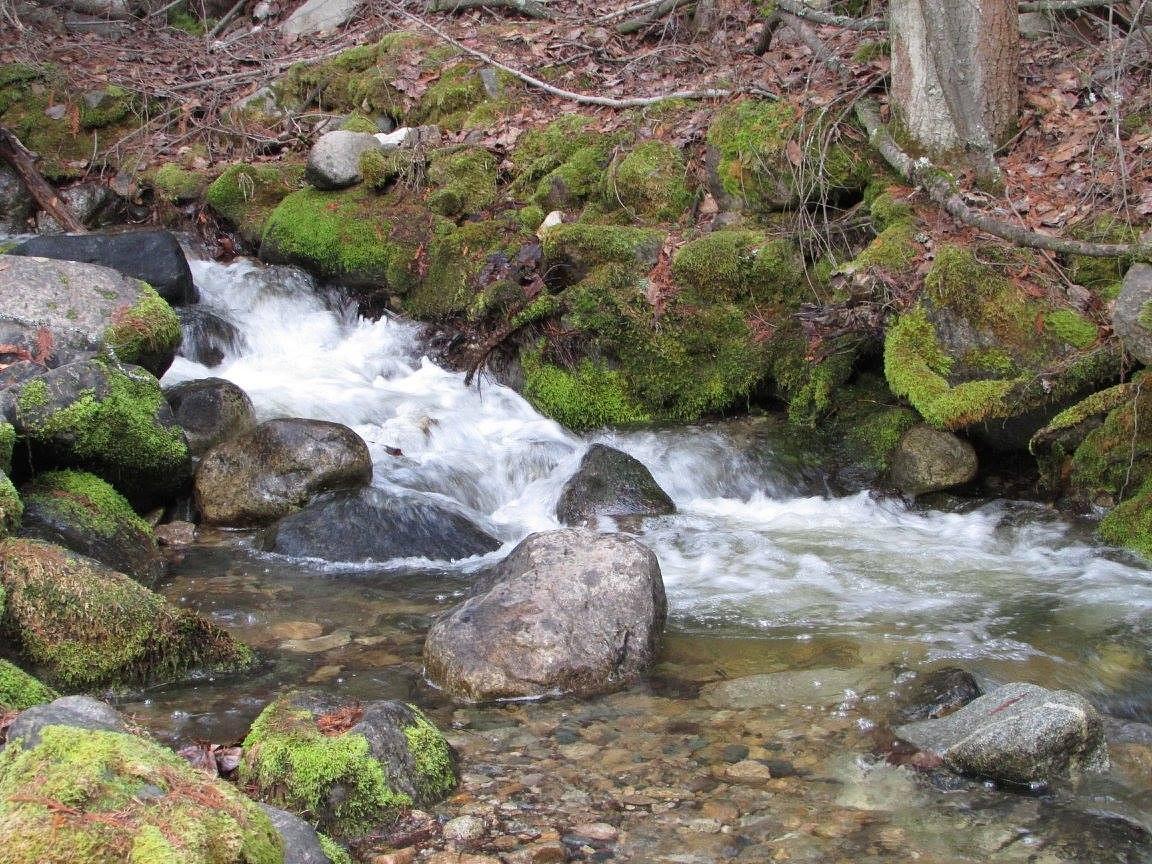 Deer Park Creek by Add1ct3d2N4tur3