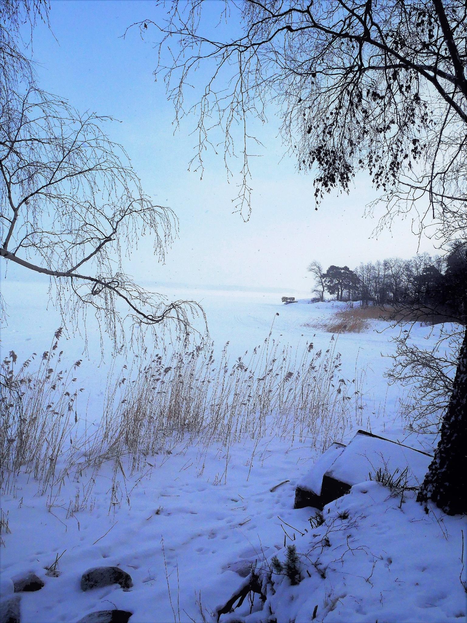 On a cold sunday! by Cicki Jarneberg