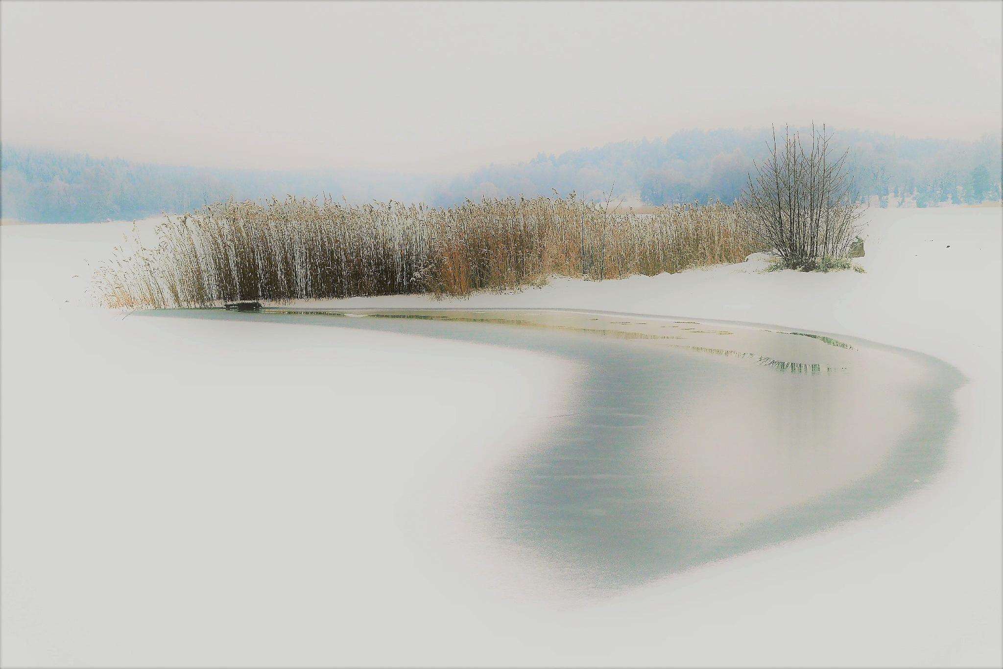 Winter! by Cicki Jarneberg