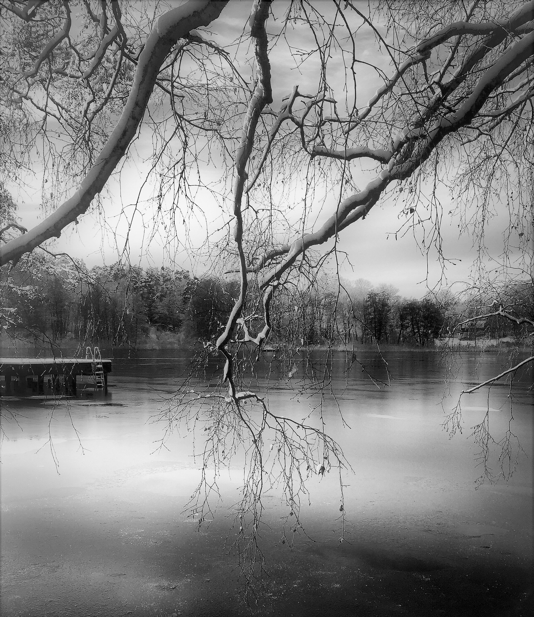 Photo in Nature #nature #winter #black and white #landscape