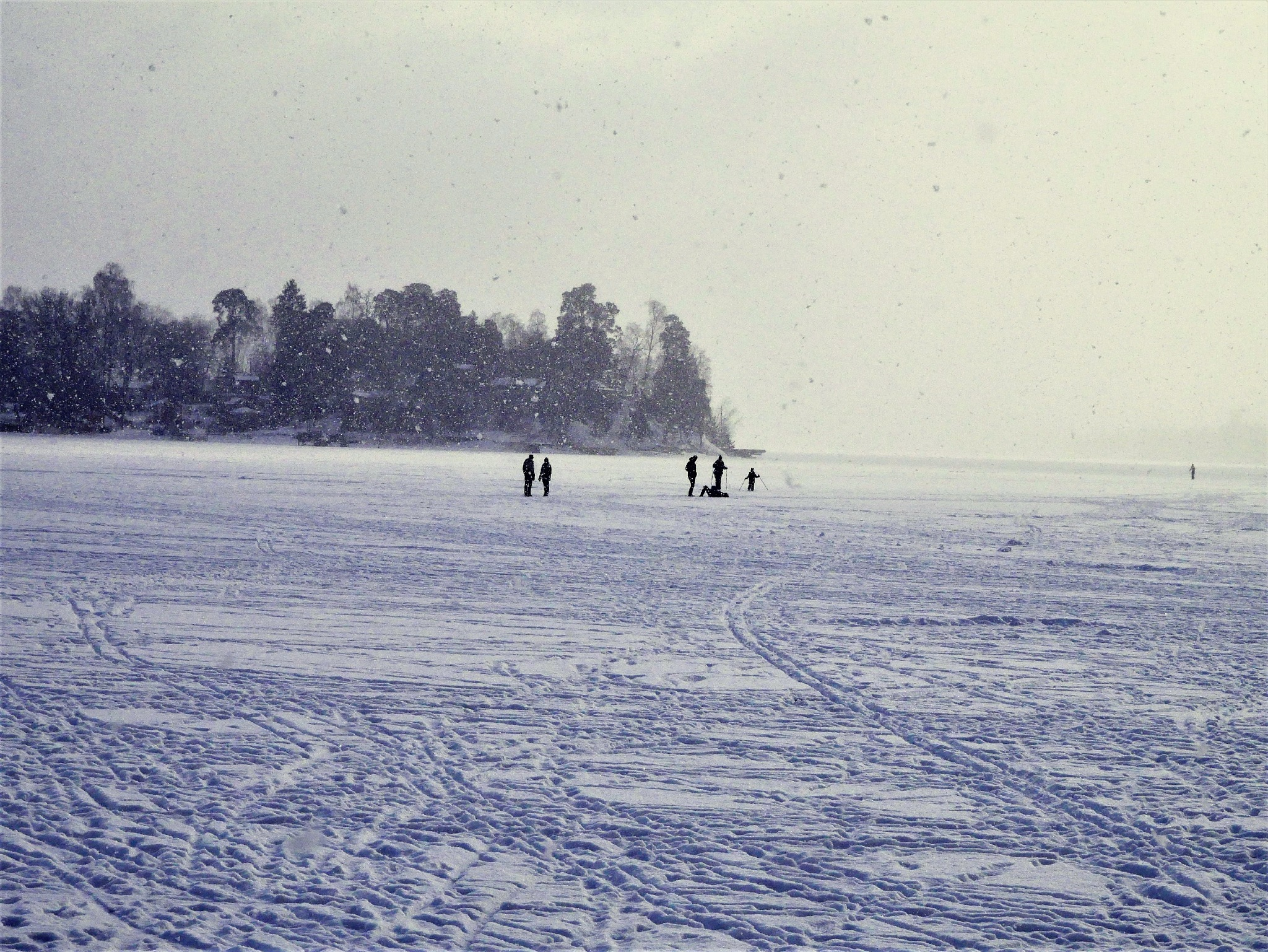 People on the ice on a cold day! by Cicki Jarneberg
