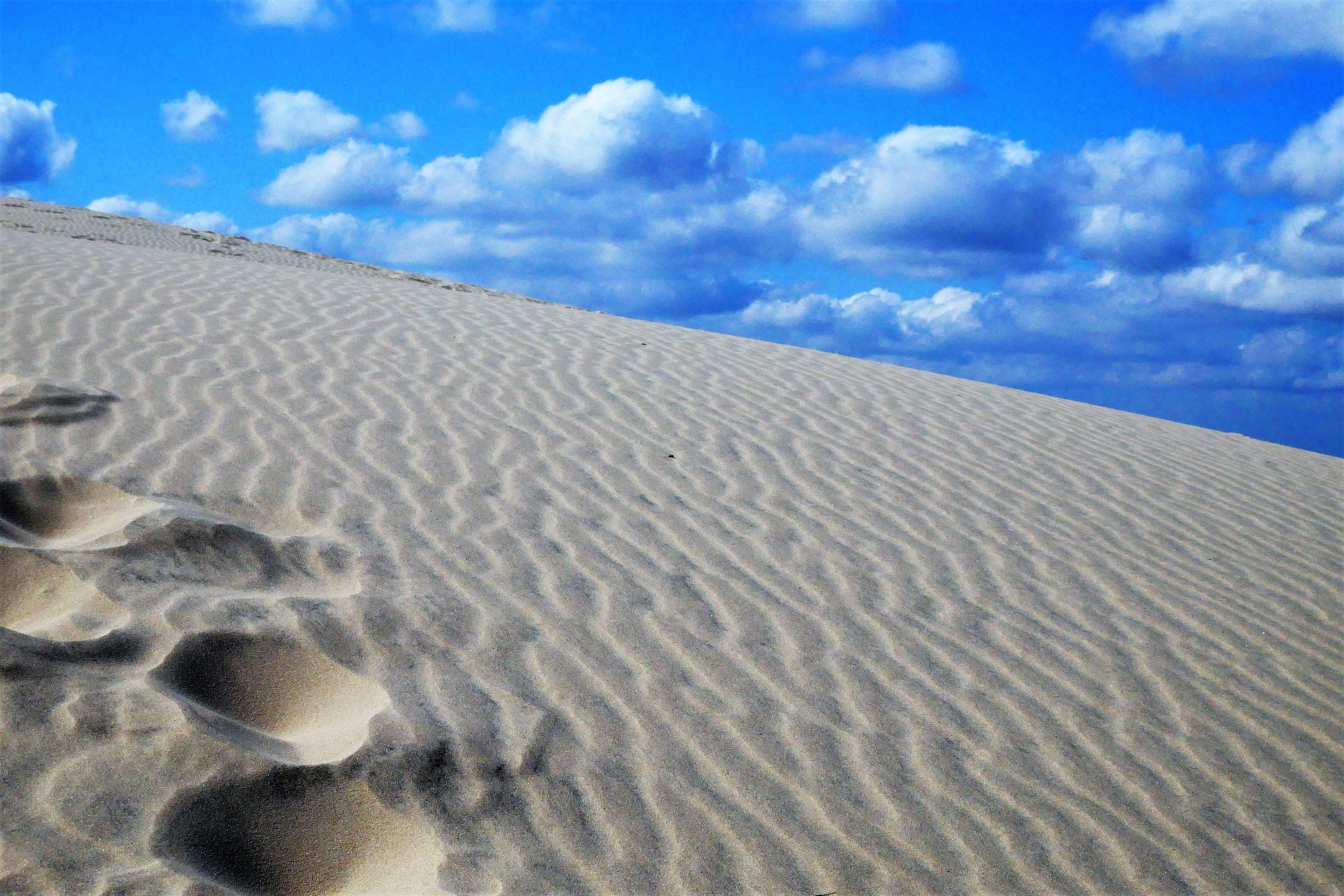 Sand! by Cicki Jarneberg