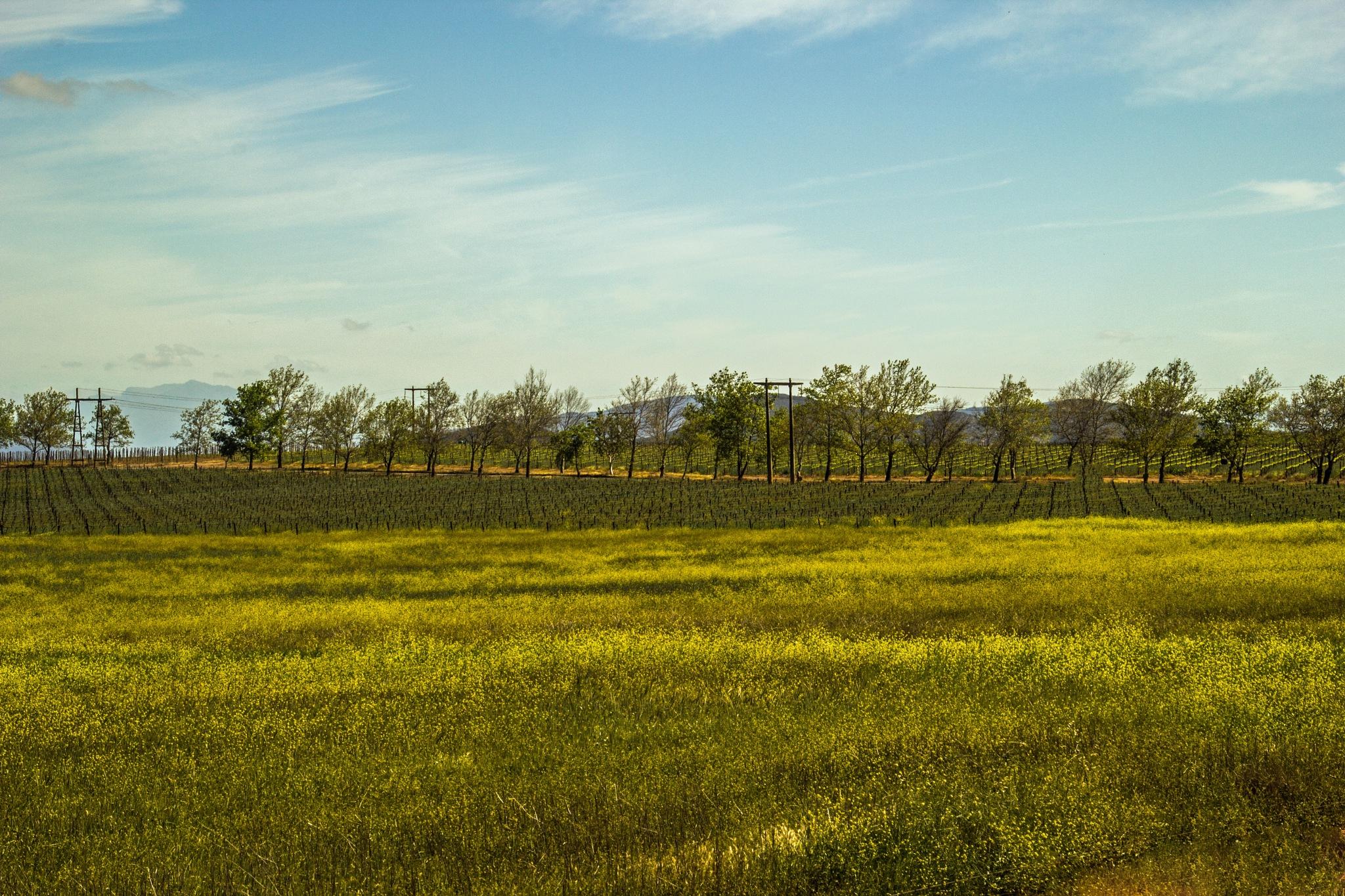 Farming by Nauta Piscatorque