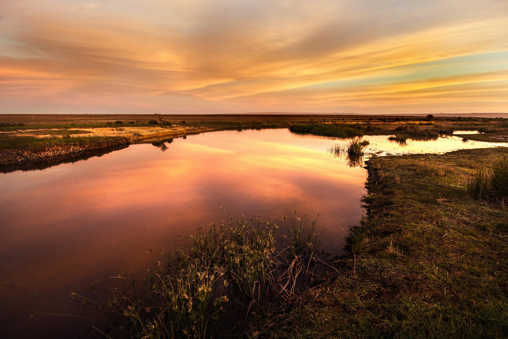 Pond at sunset by Nauta Piscatorque