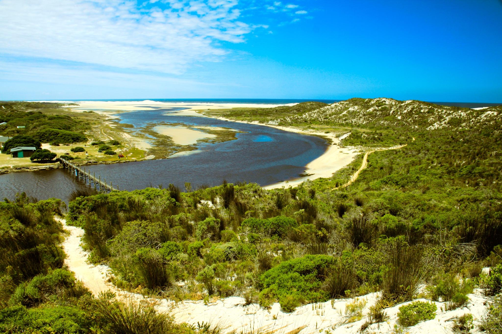Estuary by Nauta Piscatorque