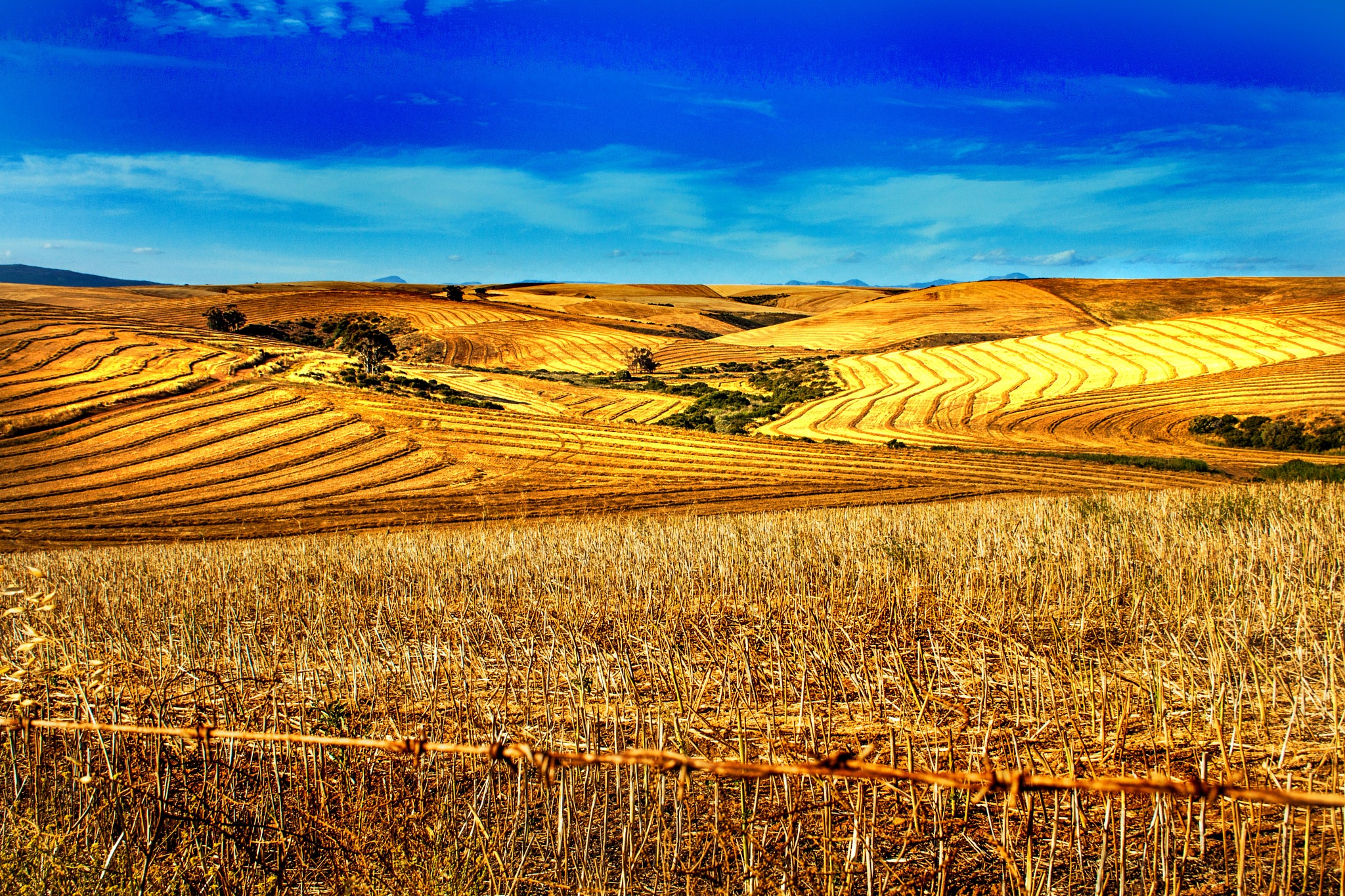 After the harvest #1 by Nauta Piscatorque