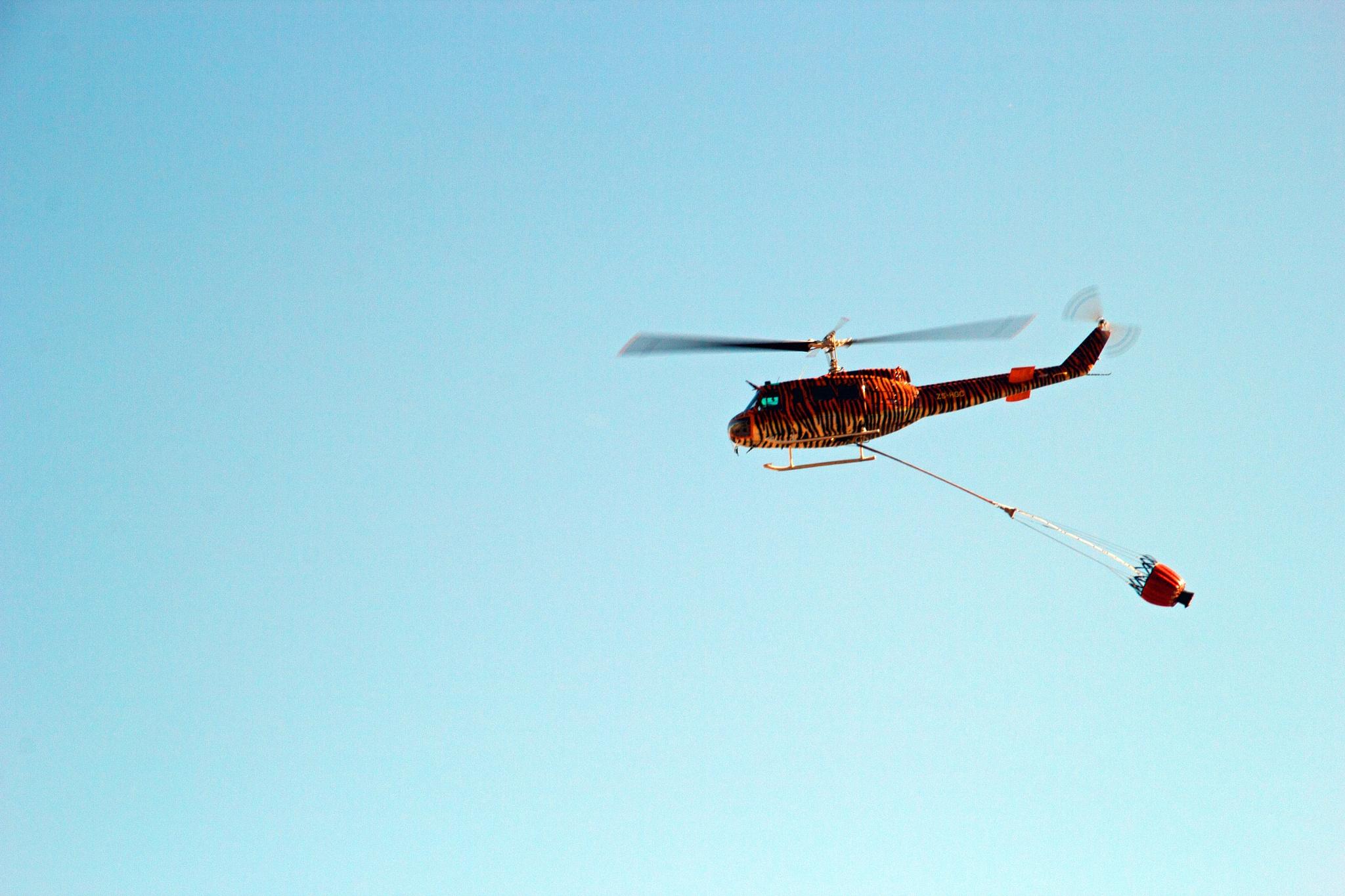 In flight by Nauta Piscatorque