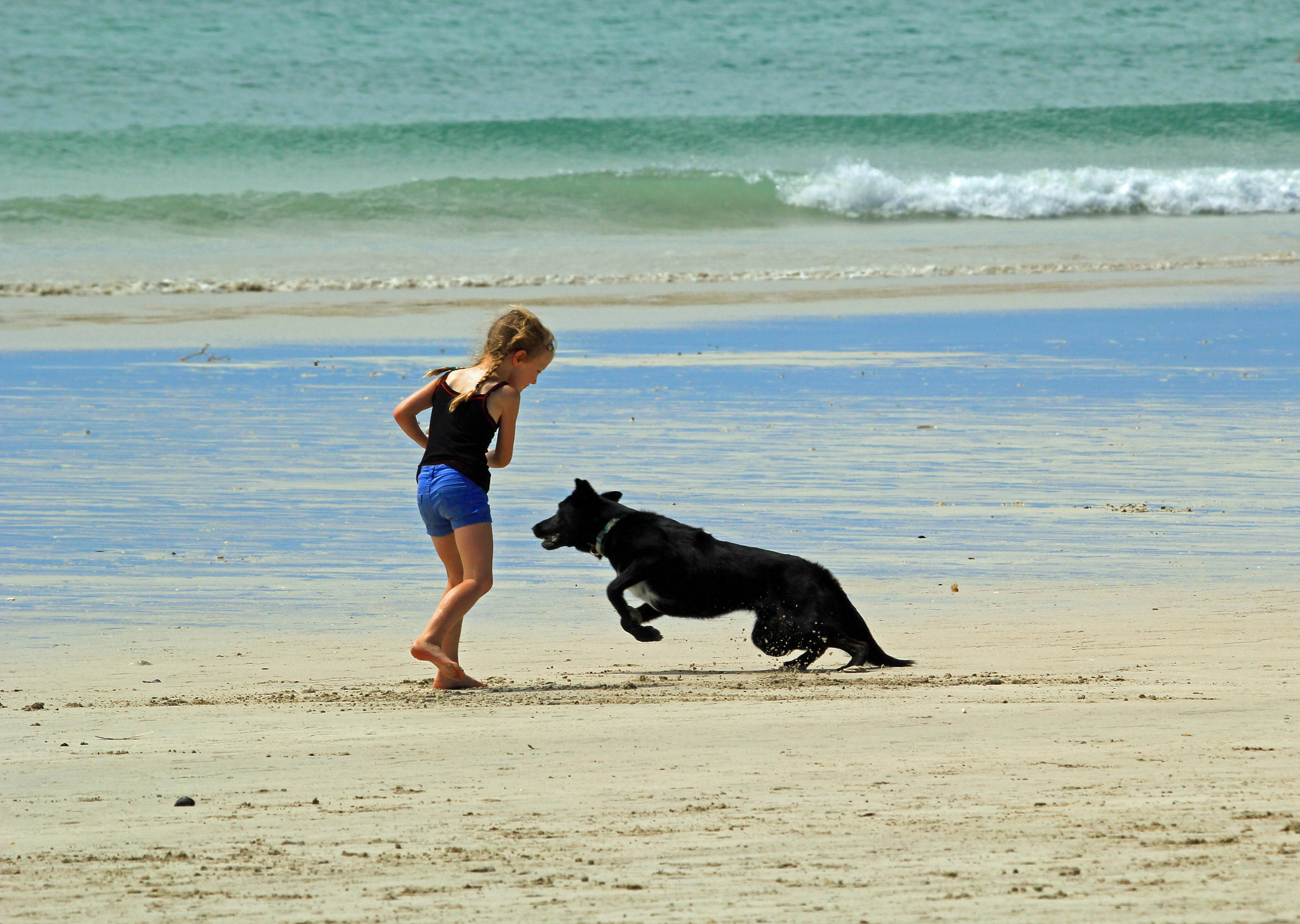 And fetch again by Nauta Piscatorque