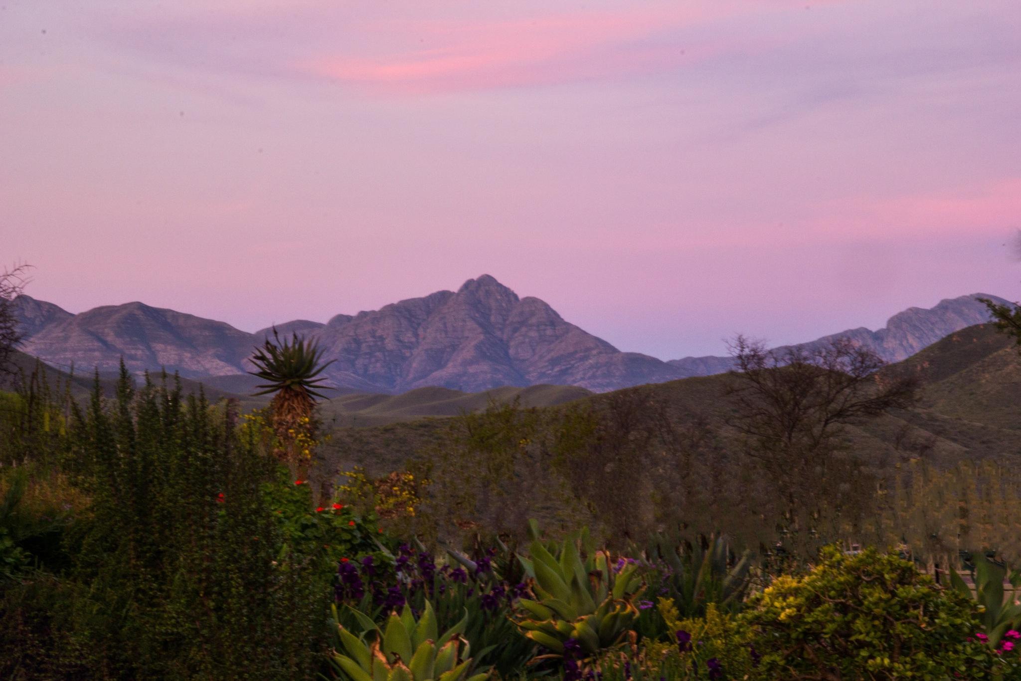 Garden and mountain peak by Nauta Piscatorque