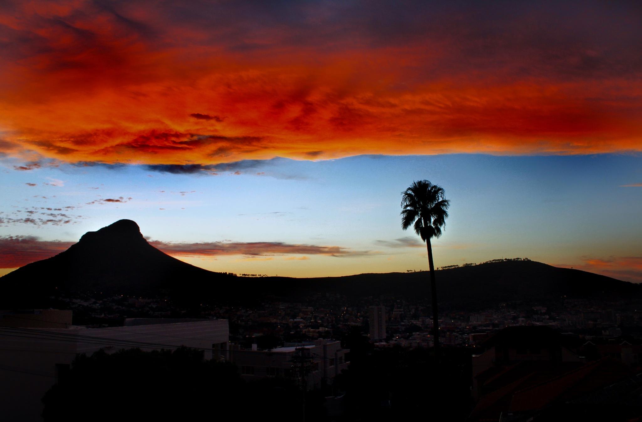 A golden cloud by Nauta Piscatorque