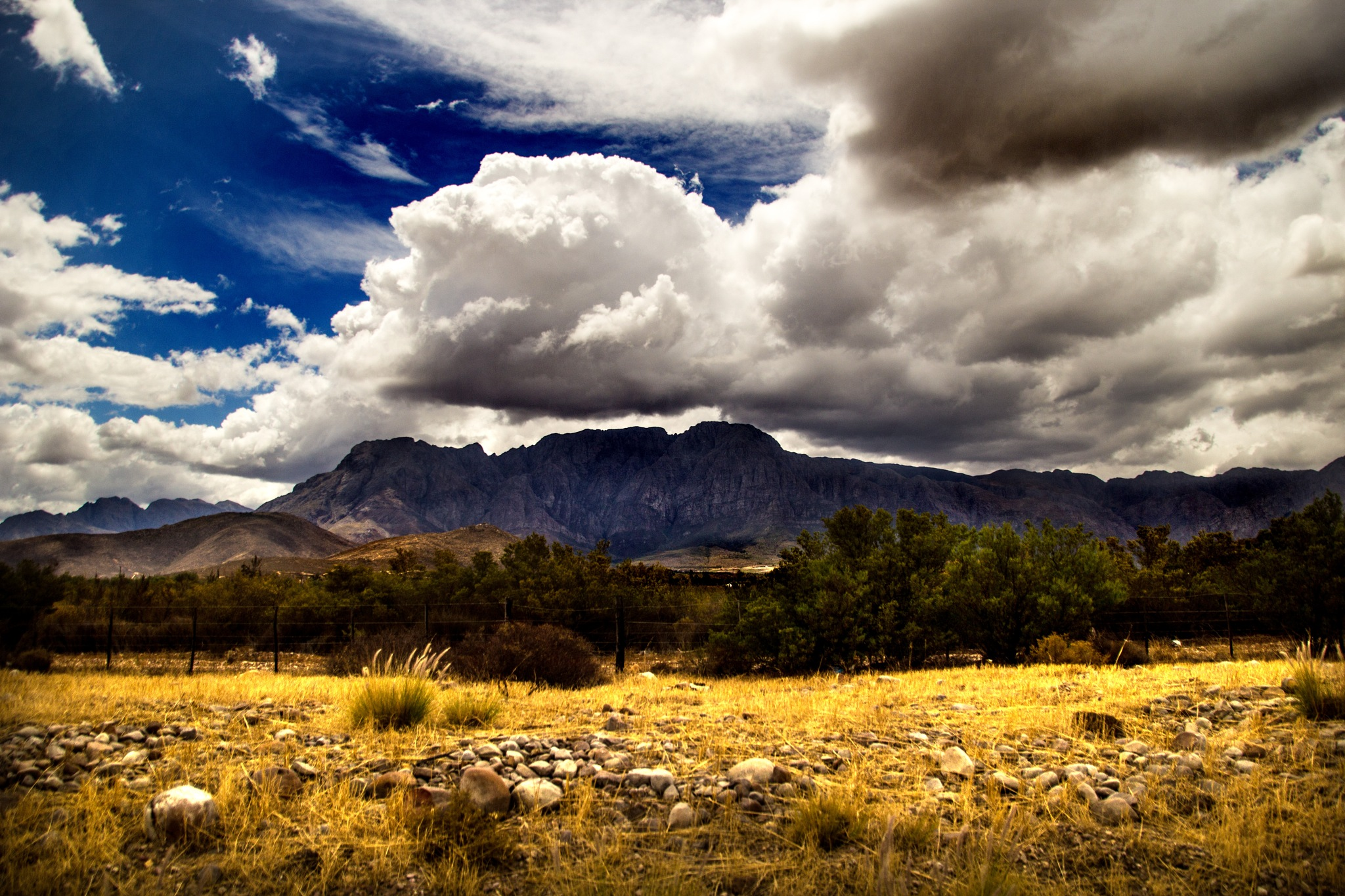 Trees, mountains and clouds by Nauta Piscatorque