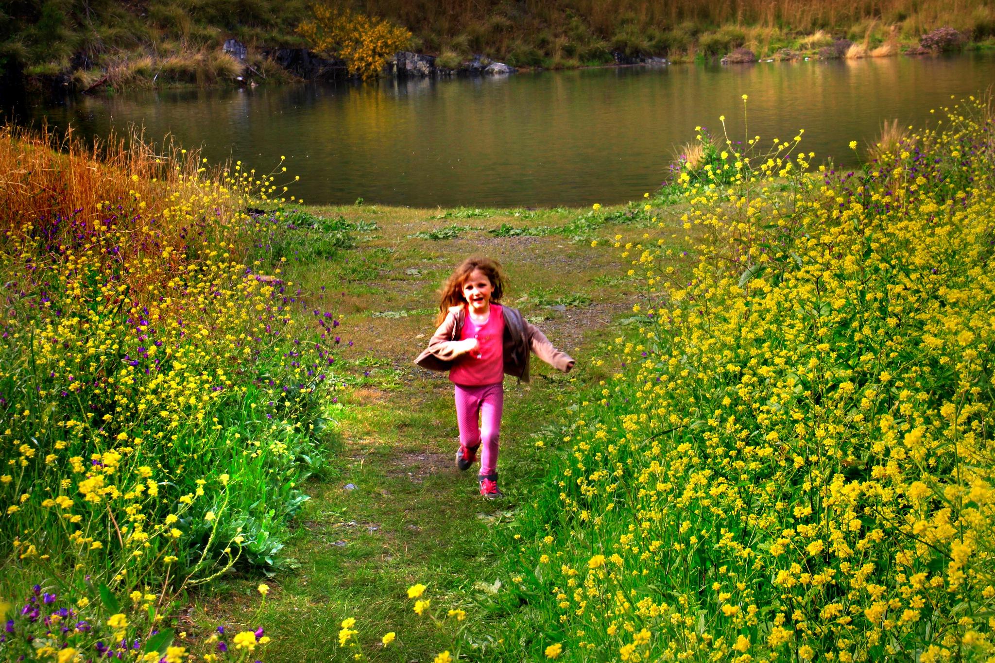 Running through the flowers by Nauta Piscatorque