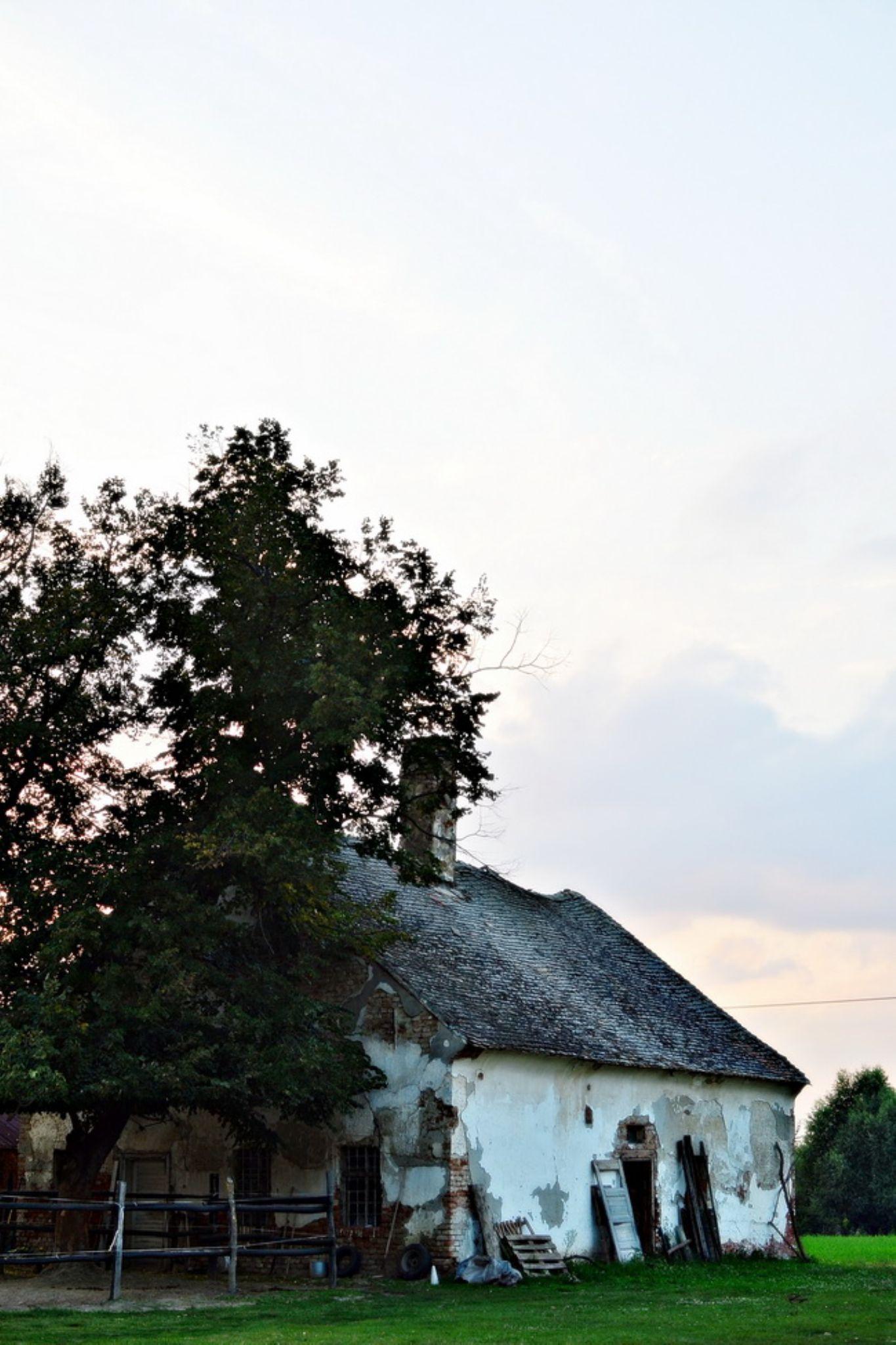 small house... by Aleksandra Bijelic
