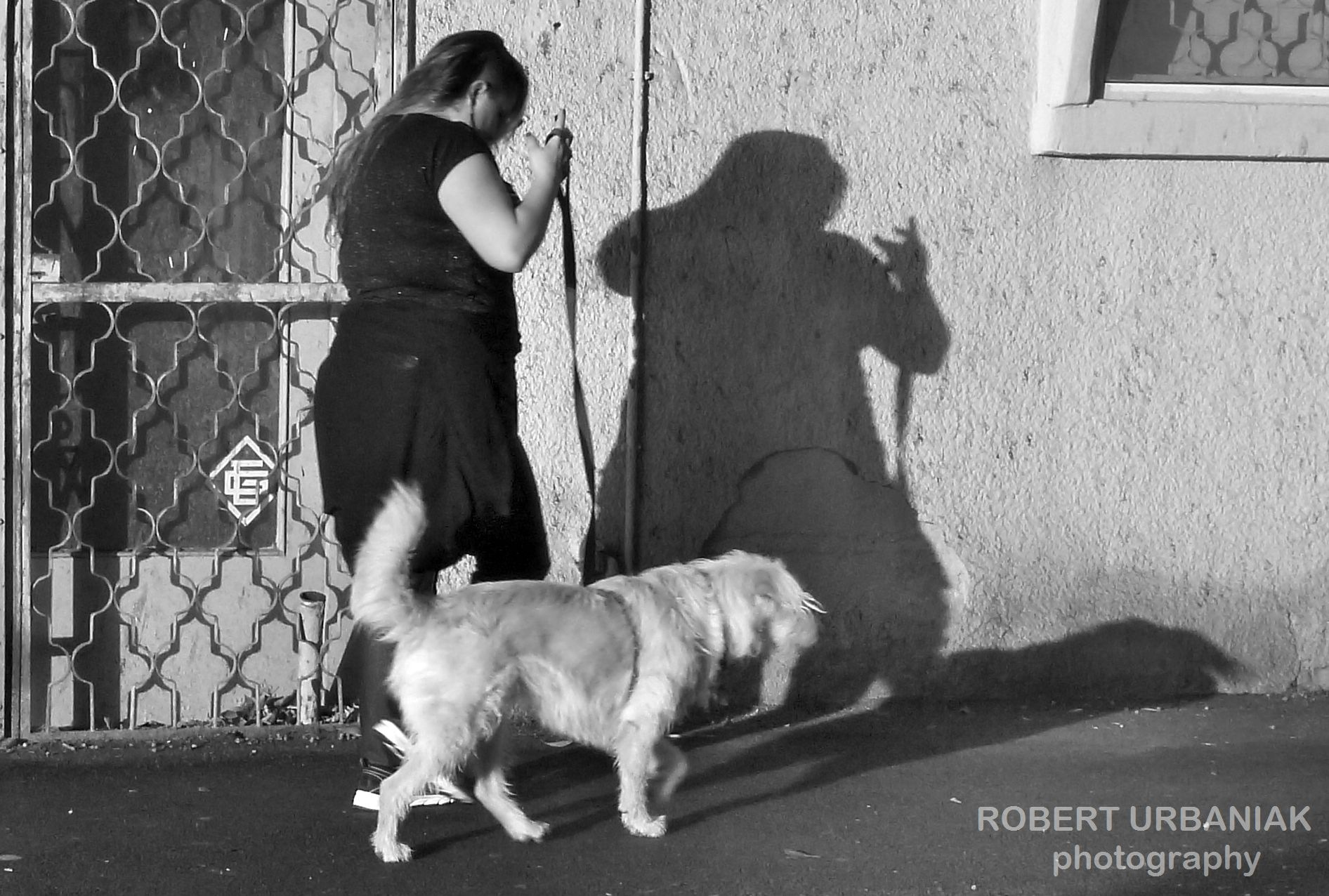with dog in shadow by Robert Urbaniak