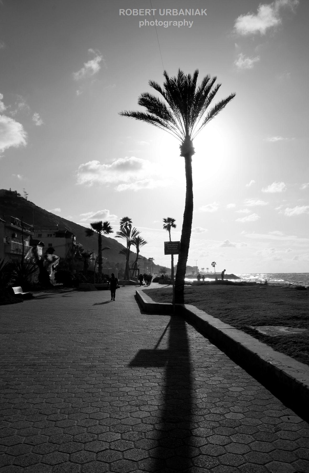 under sun by Robert Urbaniak