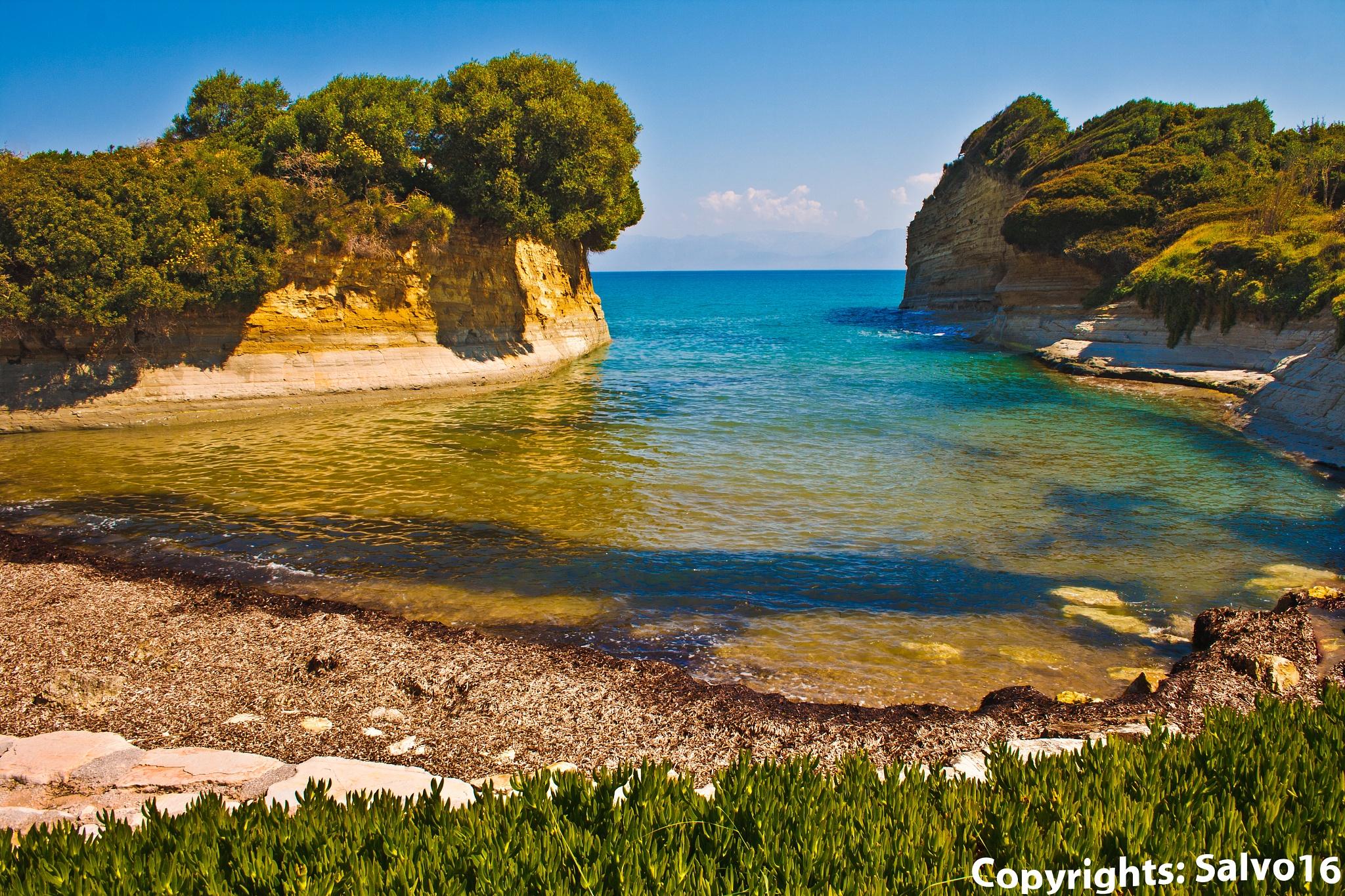 Beauties of Mediterranean sea by Salvo Salvadido