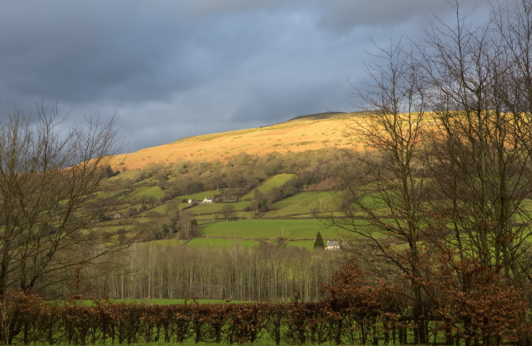 Final Light on the Hill by JaneCampbell21