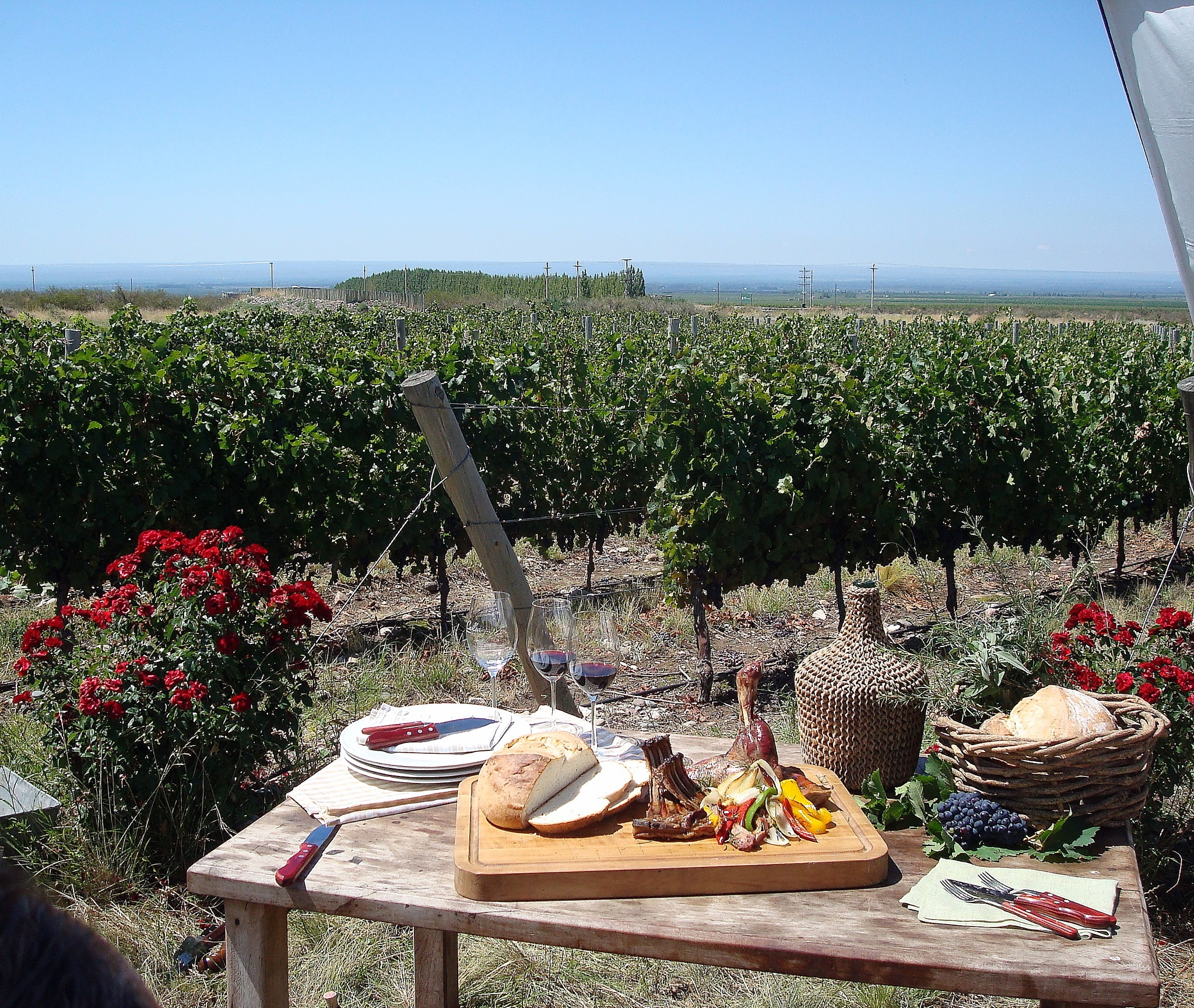 Lunch in the vineyards by Roberto Justo Robiolo