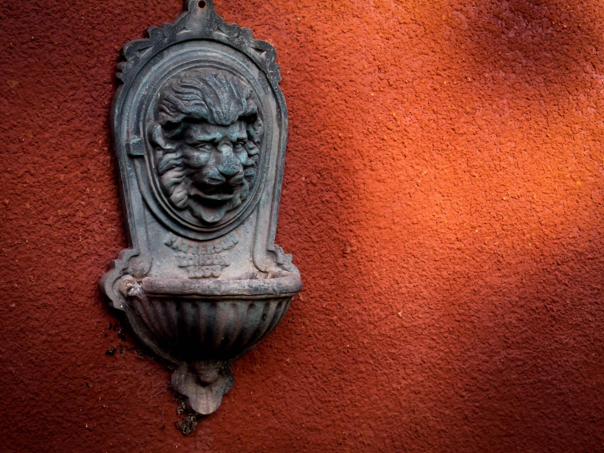 Lion's Head by Roberto Justo Robiolo
