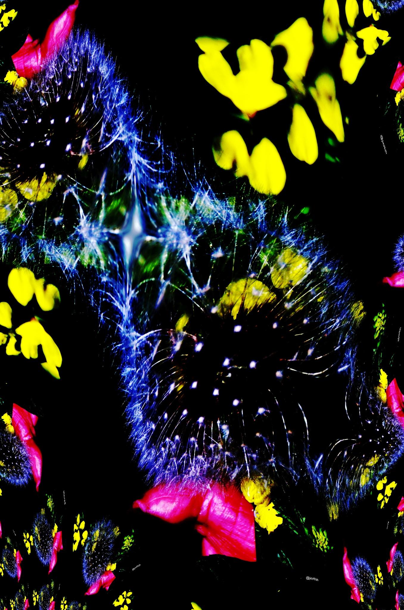 Fleur de pissenlit Astract fractale by Jmrith