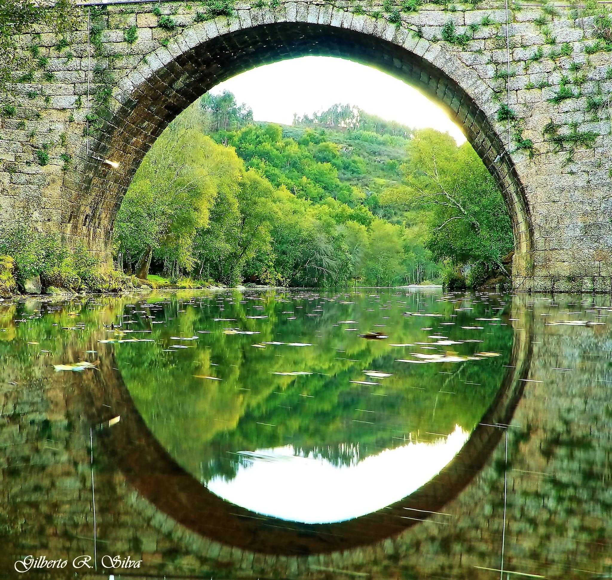 Espelho da Natureza by Gill Silva