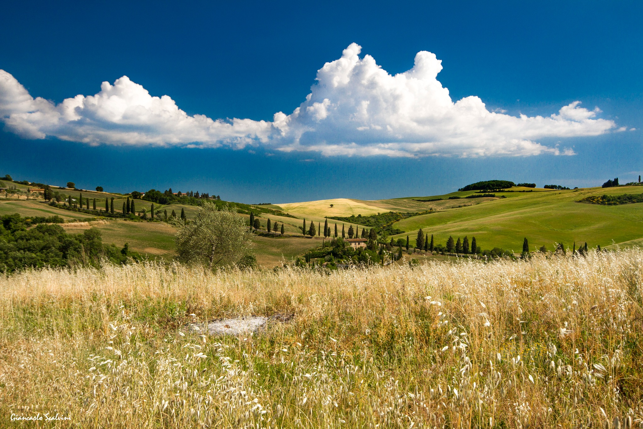 Val D'orcia  by giancarlo