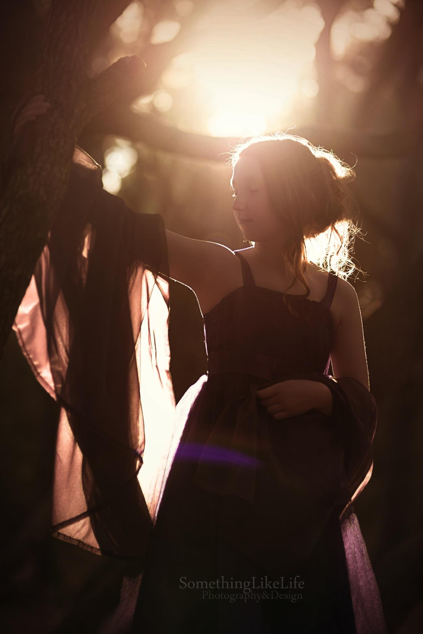 Just before dark by Nikki Roloff