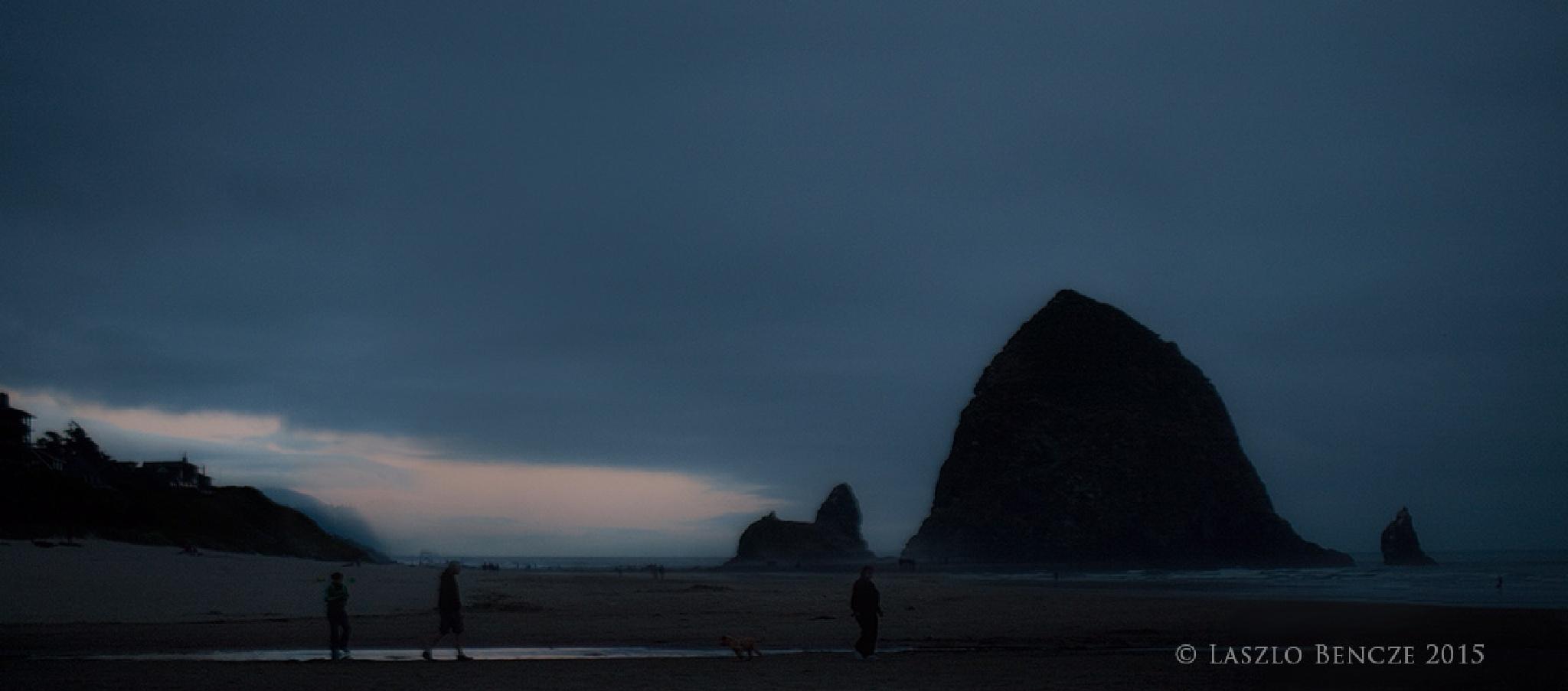 Haystack Rock, Oregon by Laszlo Bencze